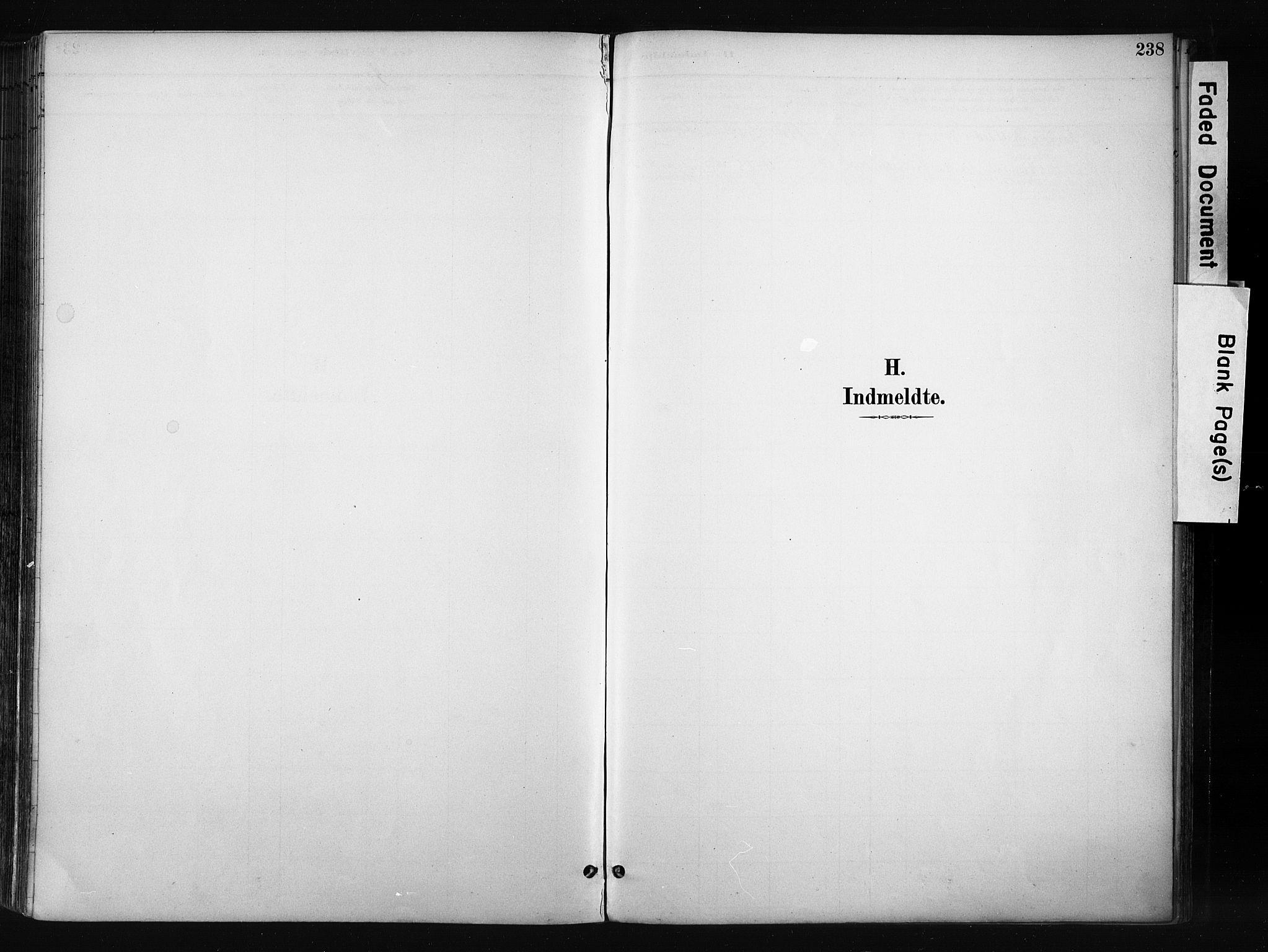 SAH, Gran prestekontor, Ministerialbok nr. 17, 1889-1897, s. 238