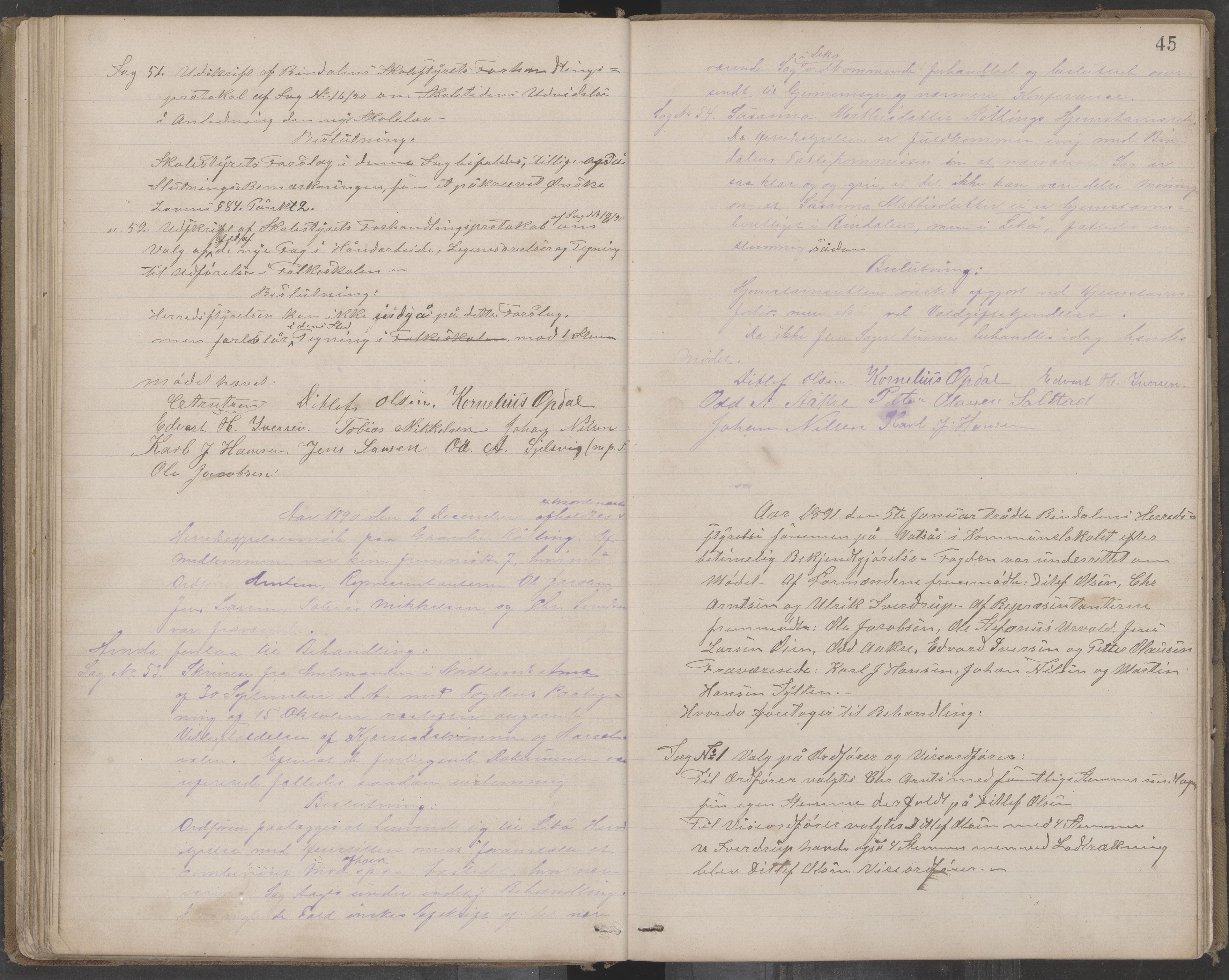 AIN, Bindal kommune. Formannskapet, A/Aa/L0000c: Møtebok, 1885-1897, s. 45