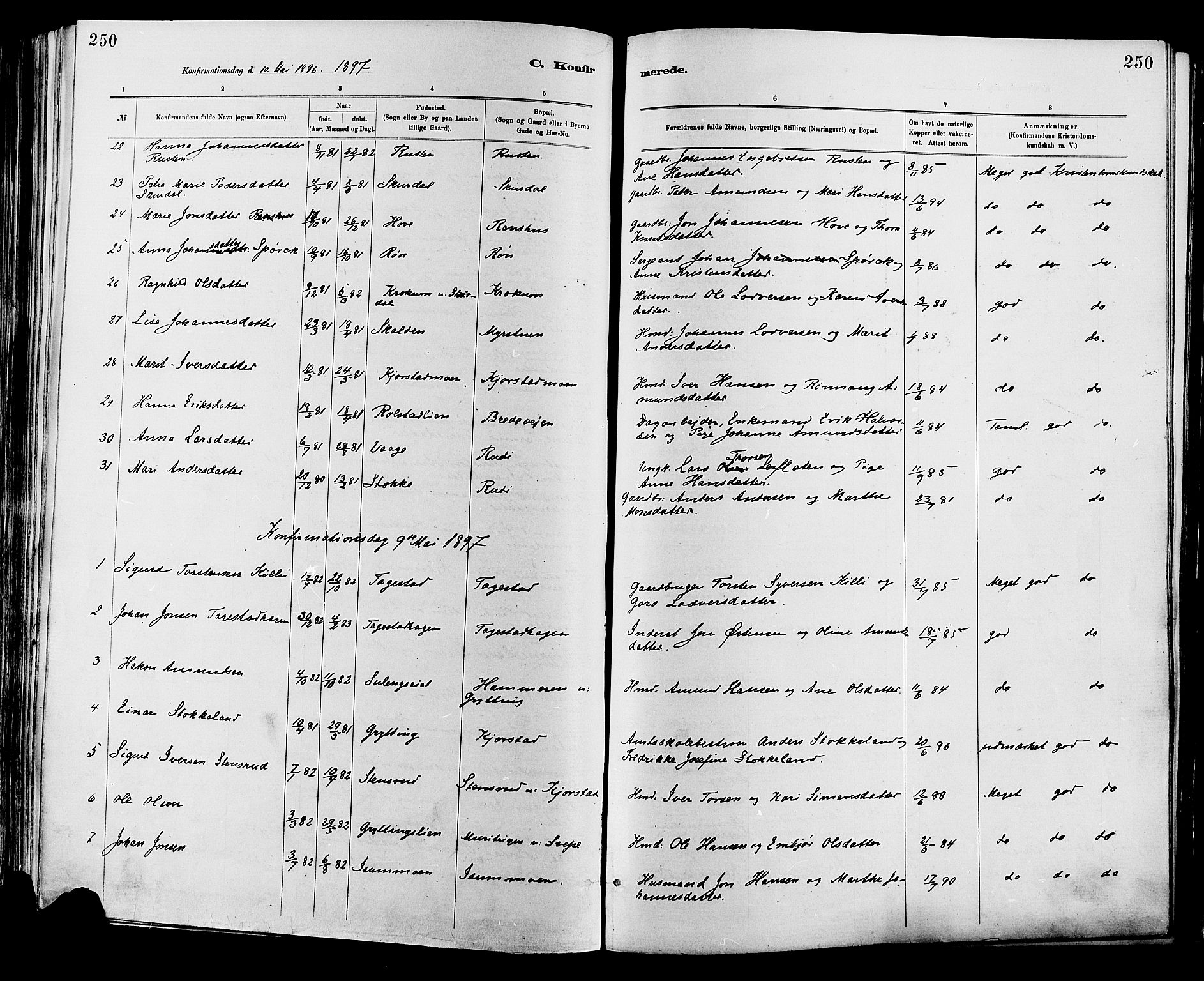 SAH, Sør-Fron prestekontor, H/Ha/Haa/L0003: Ministerialbok nr. 3, 1881-1897, s. 250