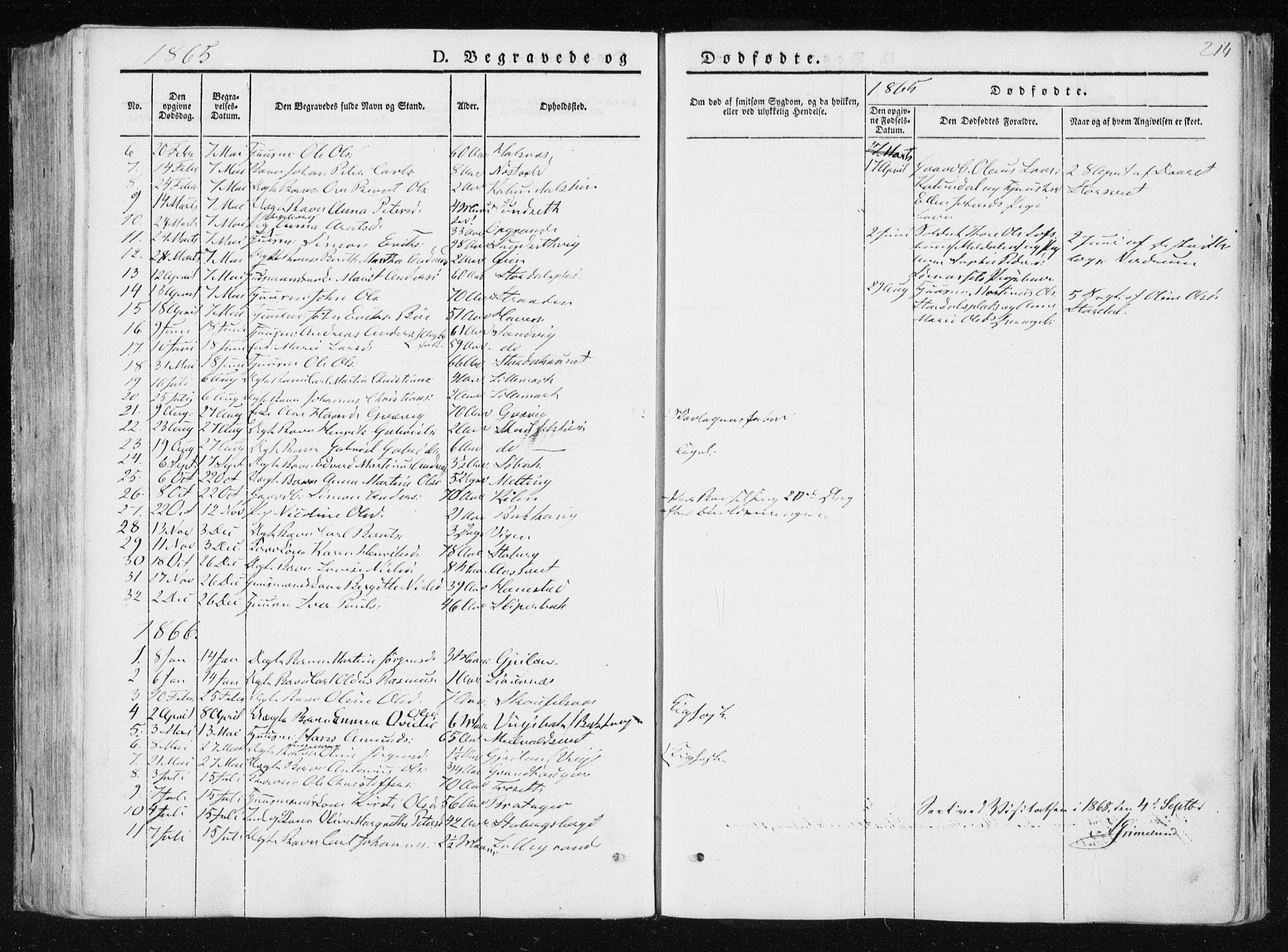 SAT, Ministerialprotokoller, klokkerbøker og fødselsregistre - Nord-Trøndelag, 733/L0323: Ministerialbok nr. 733A02, 1843-1870, s. 214