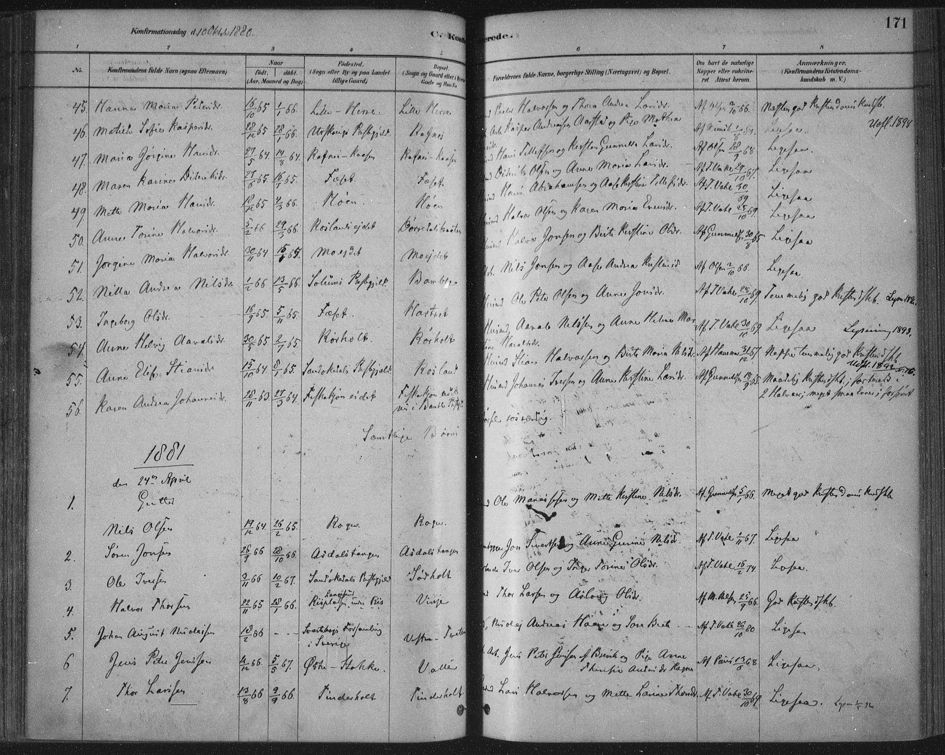 SAKO, Bamble kirkebøker, F/Fa/L0007: Ministerialbok nr. I 7, 1878-1888, s. 171