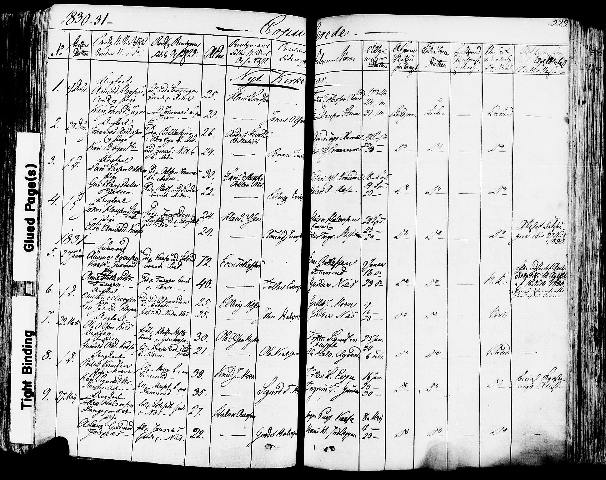 SAKO, Sauherad kirkebøker, F/Fa/L0006: Ministerialbok nr. I 6, 1827-1850, s. 229