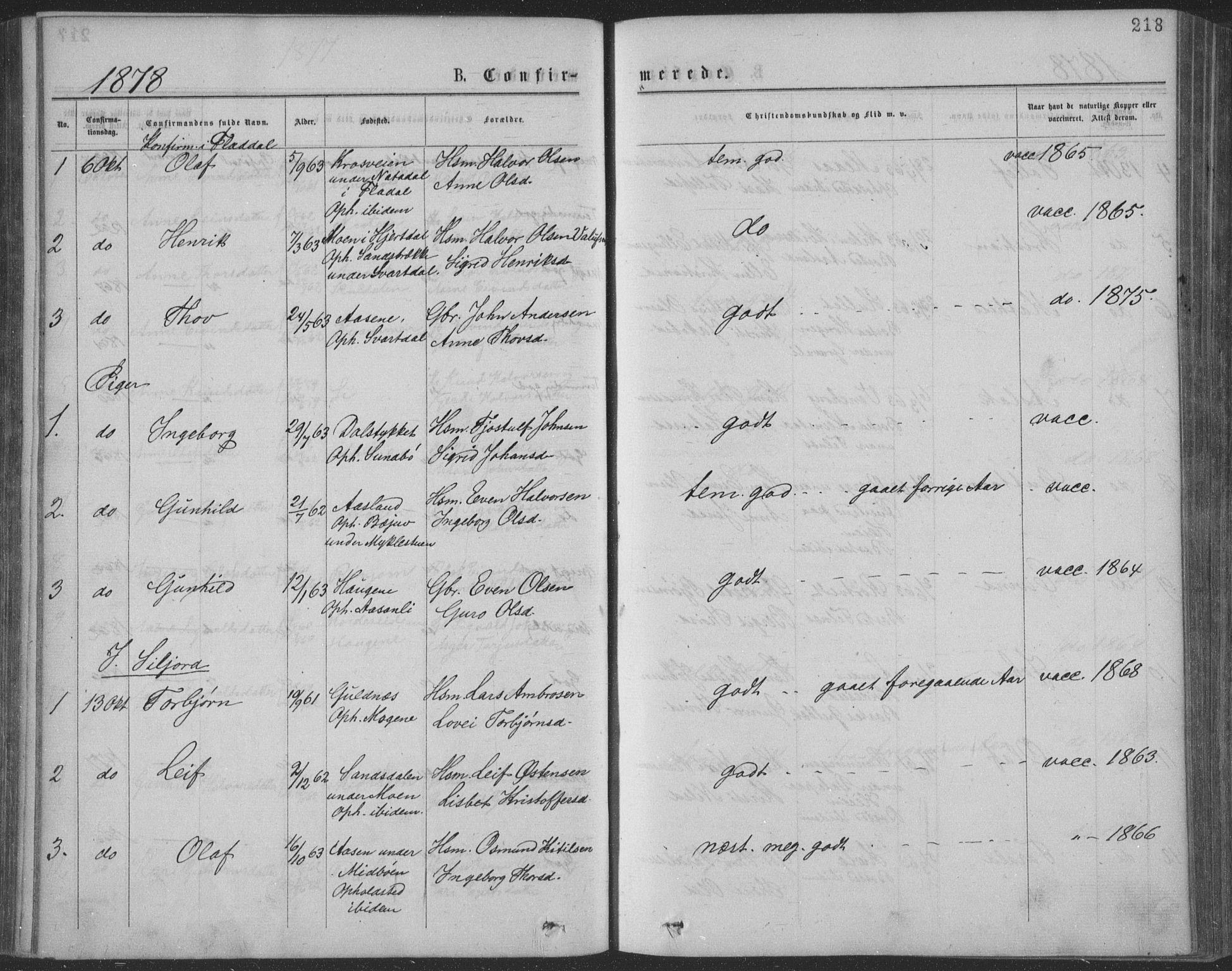 SAKO, Seljord kirkebøker, F/Fa/L0014: Ministerialbok nr. I 14, 1877-1886, s. 218