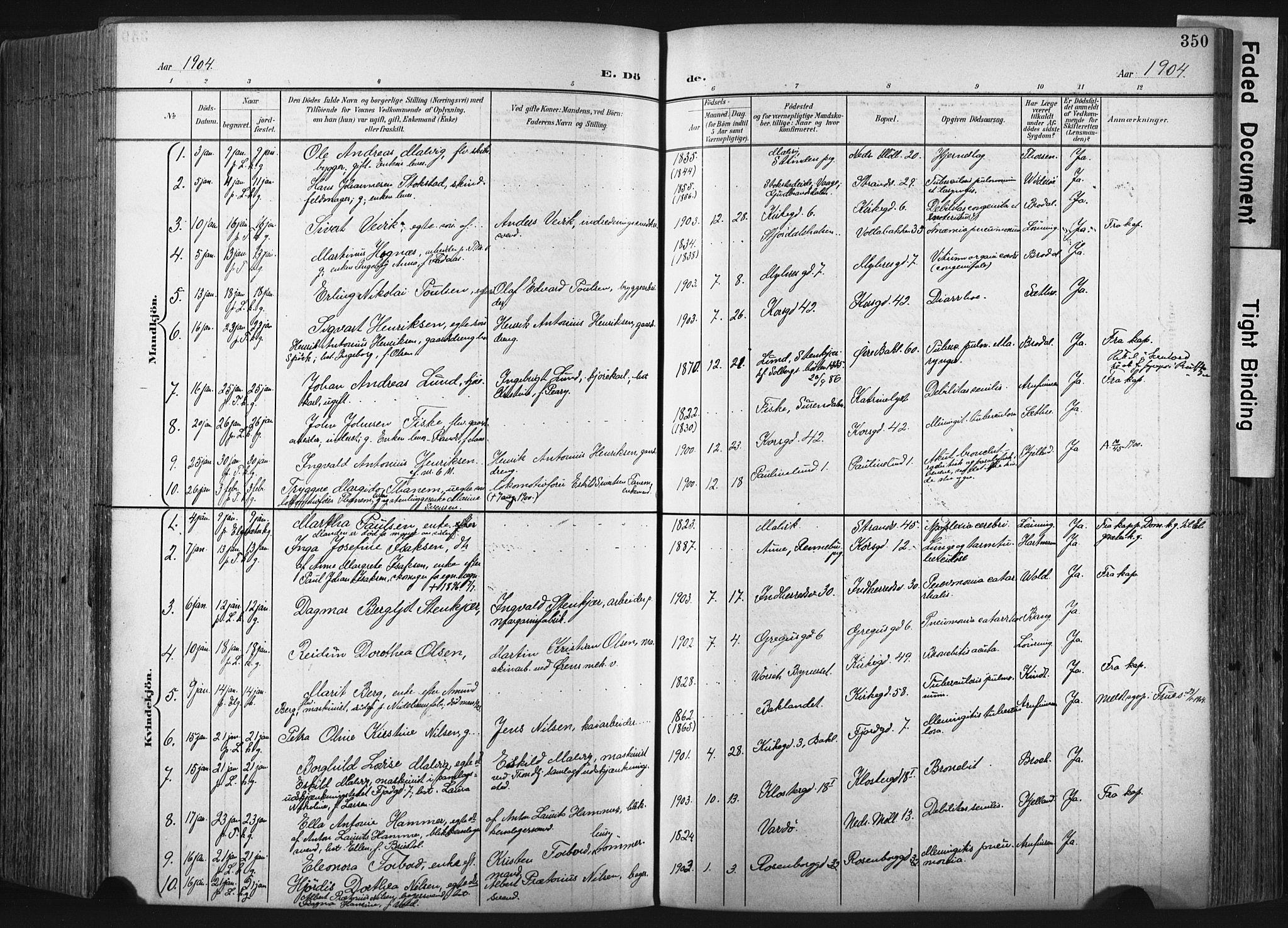 SAT, Ministerialprotokoller, klokkerbøker og fødselsregistre - Sør-Trøndelag, 604/L0201: Ministerialbok nr. 604A21, 1901-1911, s. 350