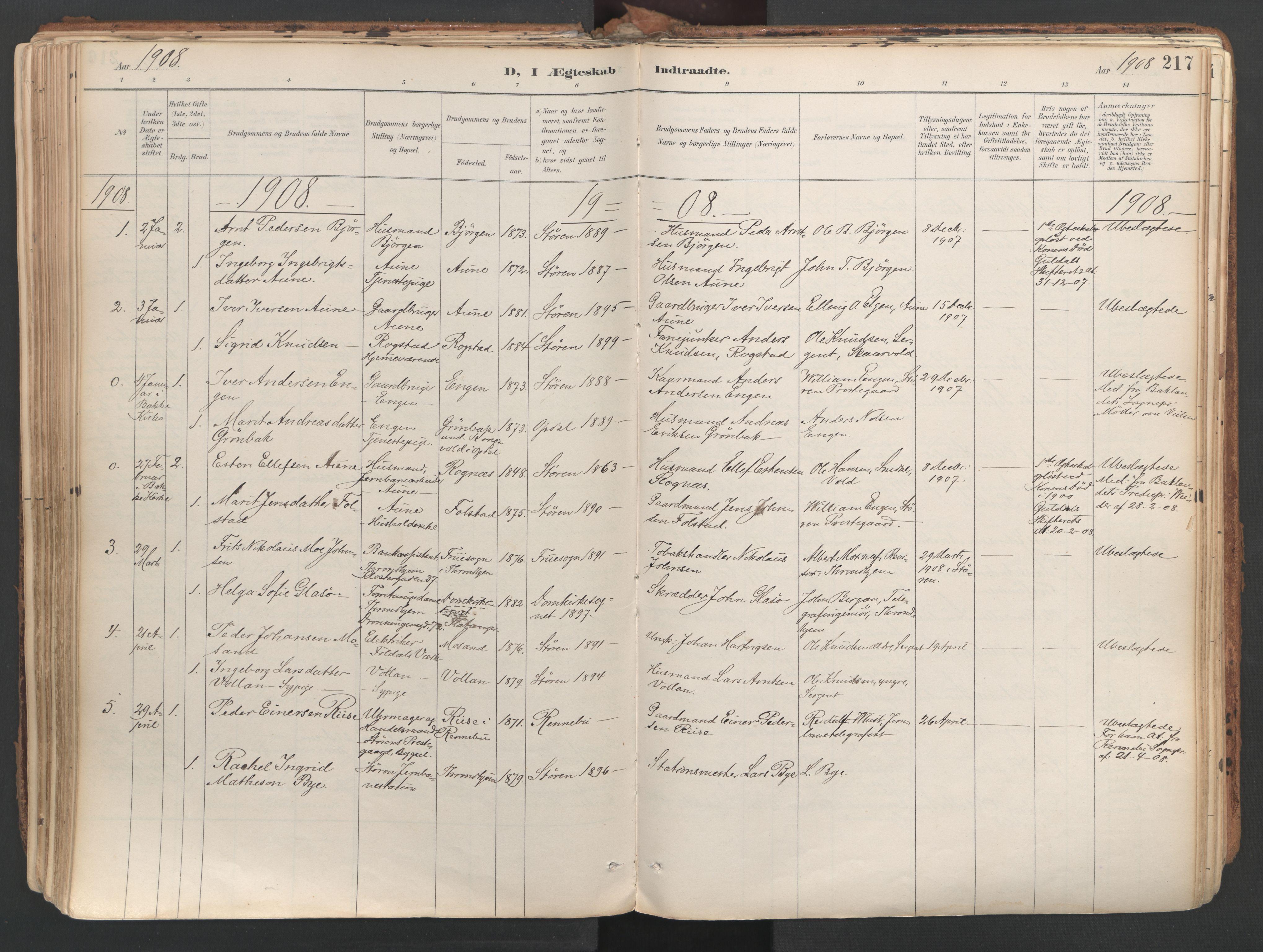 SAT, Ministerialprotokoller, klokkerbøker og fødselsregistre - Sør-Trøndelag, 687/L1004: Ministerialbok nr. 687A10, 1891-1923, s. 217
