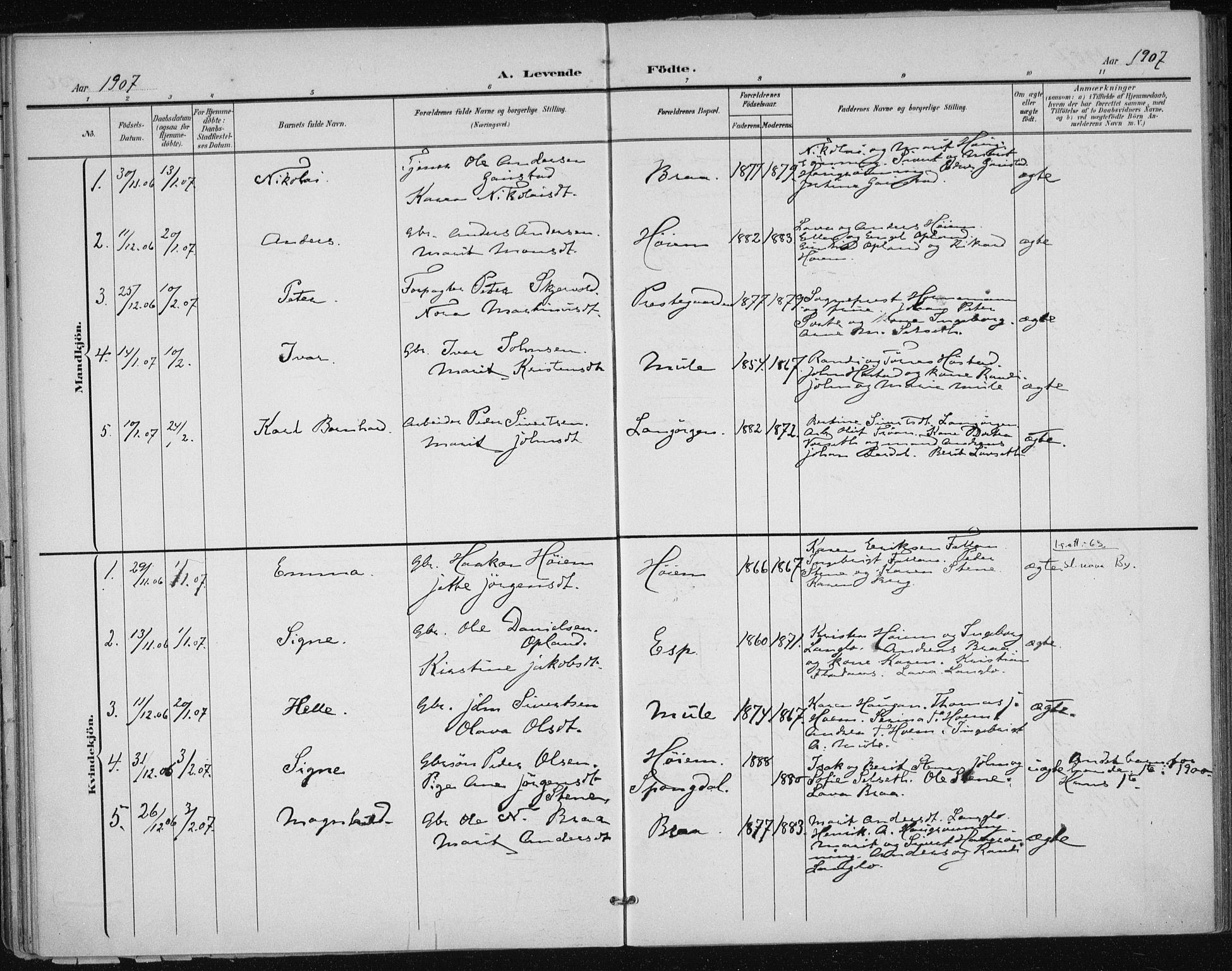 SAT, Ministerialprotokoller, klokkerbøker og fødselsregistre - Sør-Trøndelag, 612/L0380: Ministerialbok nr. 612A12, 1898-1907