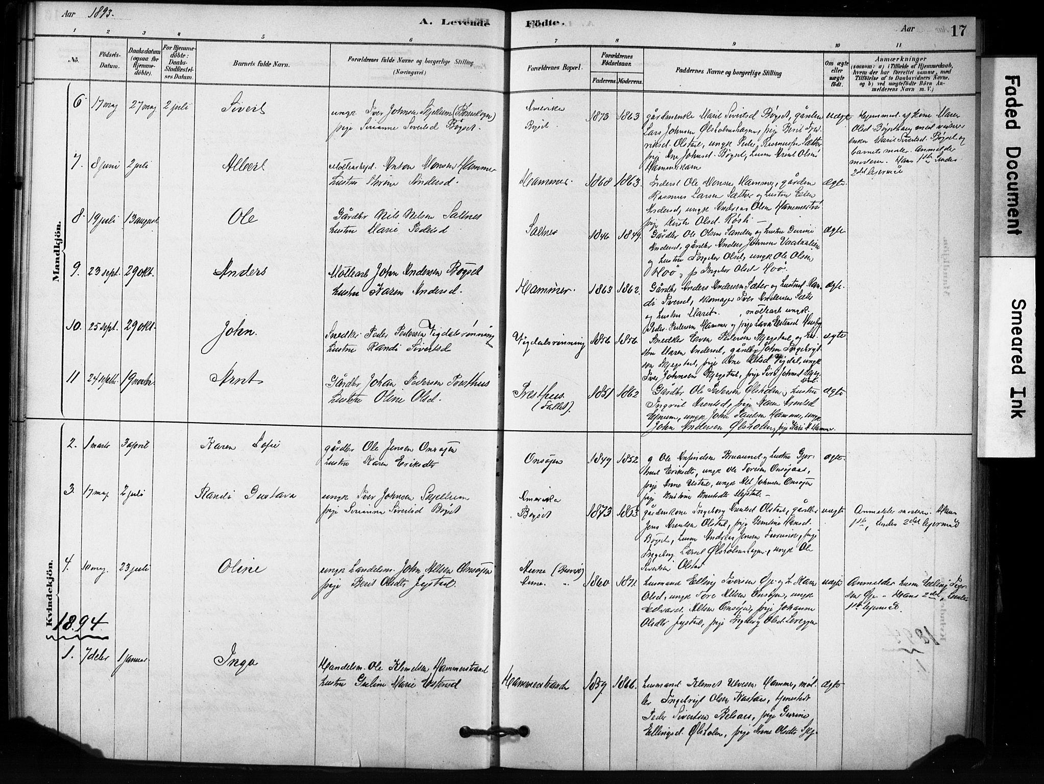 SAT, Ministerialprotokoller, klokkerbøker og fødselsregistre - Sør-Trøndelag, 666/L0786: Ministerialbok nr. 666A04, 1878-1895, s. 17