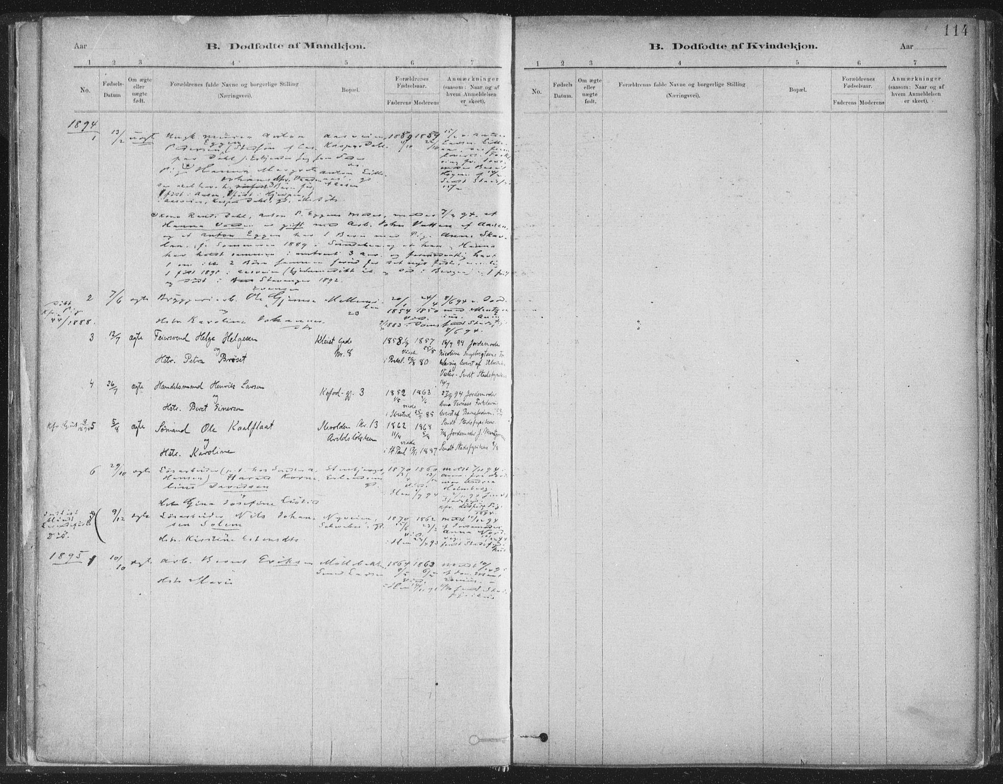 SAT, Ministerialprotokoller, klokkerbøker og fødselsregistre - Sør-Trøndelag, 603/L0162: Ministerialbok nr. 603A01, 1879-1895, s. 114
