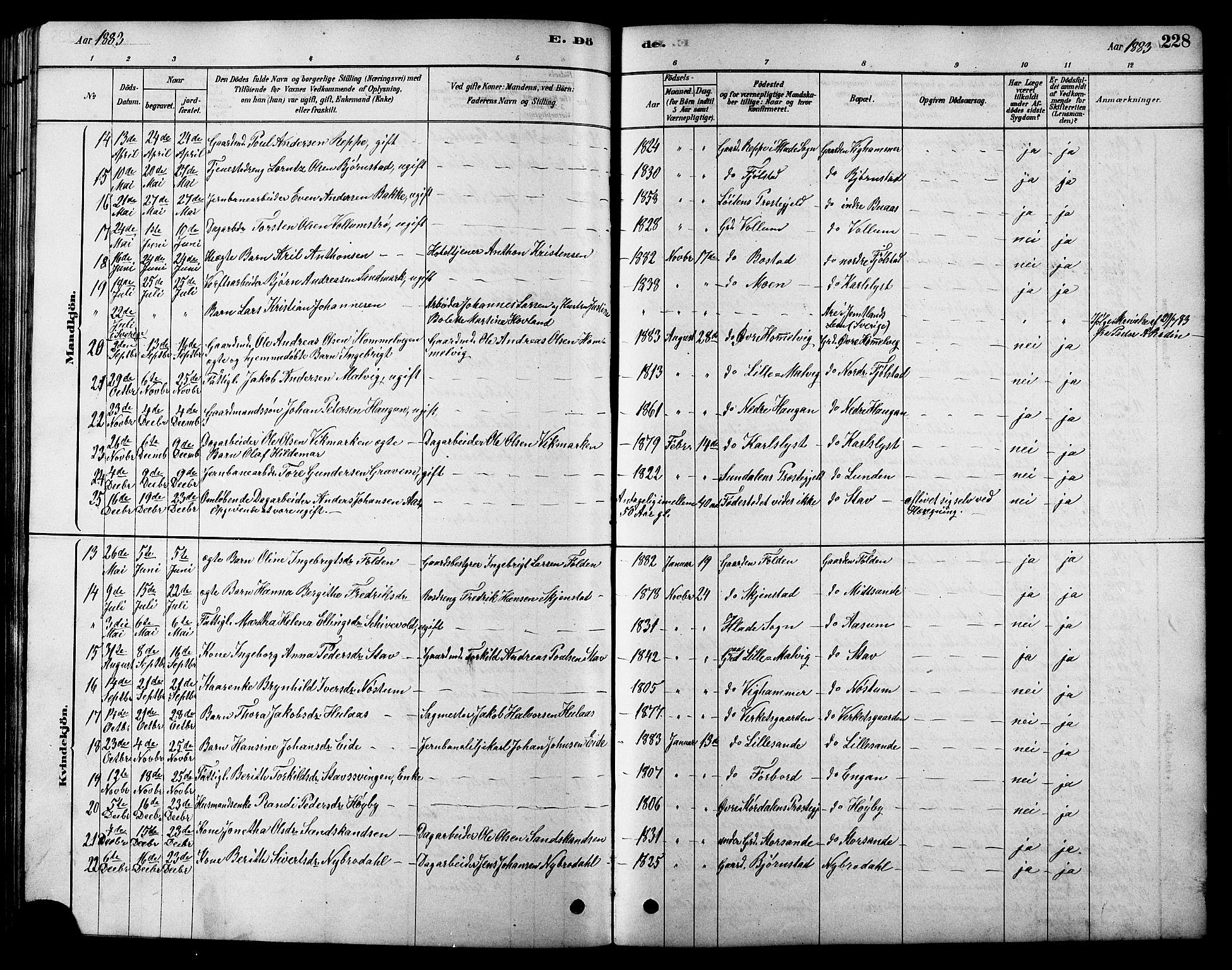 SAT, Ministerialprotokoller, klokkerbøker og fødselsregistre - Sør-Trøndelag, 616/L0423: Klokkerbok nr. 616C06, 1878-1903, s. 228