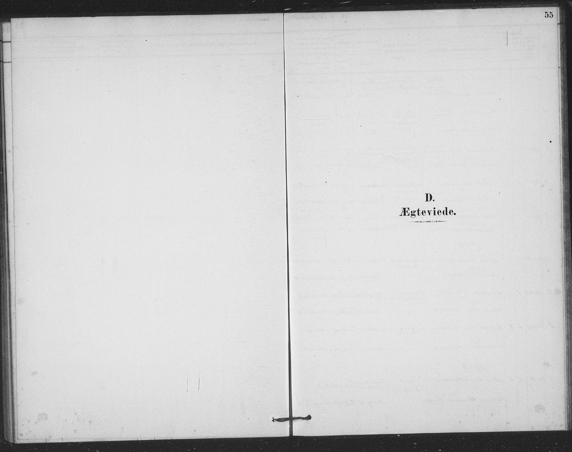 SAKO, Bamble kirkebøker, F/Fb/L0001: Ministerialbok nr. II 1, 1878-1899, s. 55