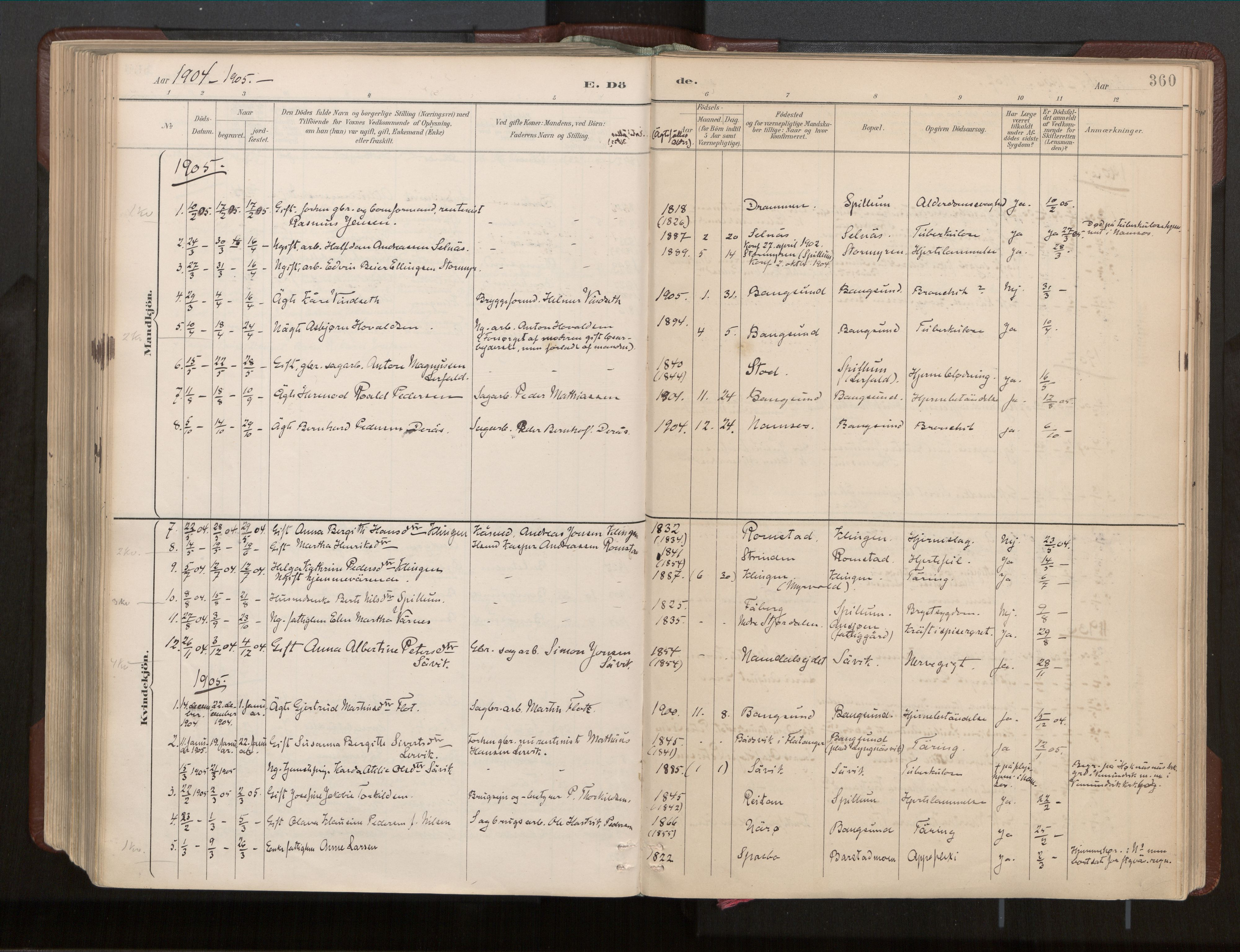 SAT, Ministerialprotokoller, klokkerbøker og fødselsregistre - Nord-Trøndelag, 770/L0589: Ministerialbok nr. 770A03, 1887-1929, s. 360