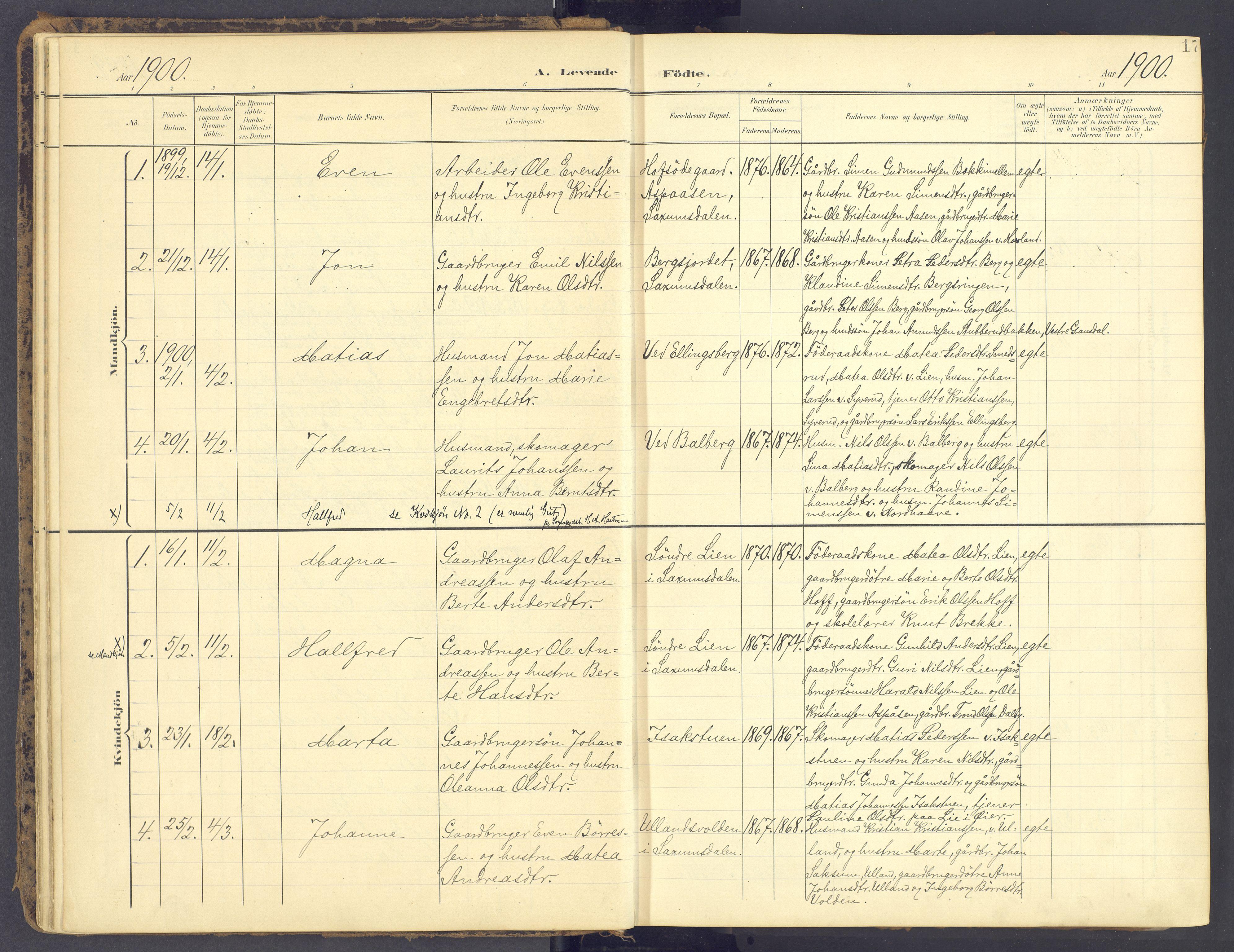 SAH, Fåberg prestekontor, Ministerialbok nr. 12, 1899-1915, s. 17