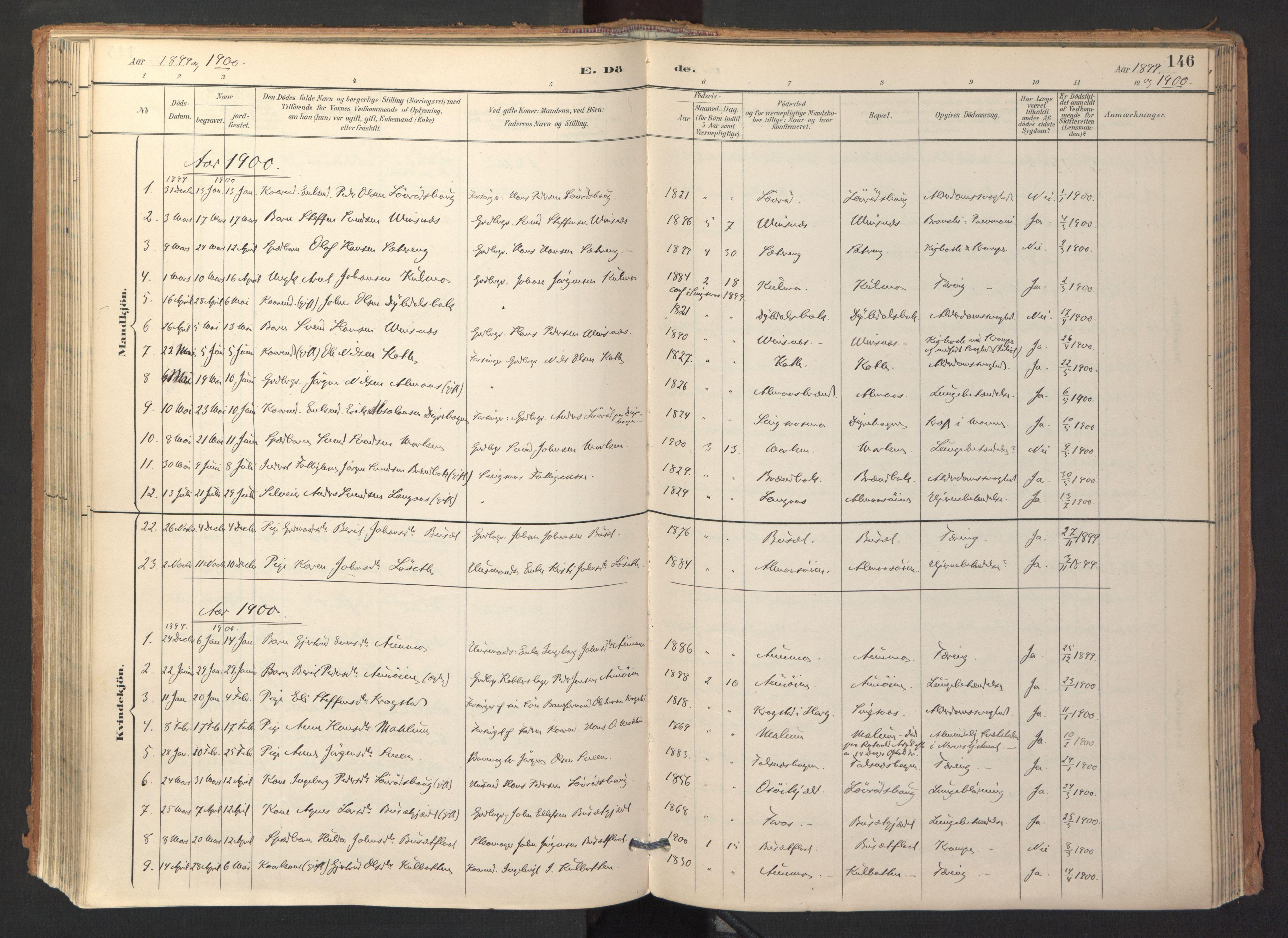 SAT, Ministerialprotokoller, klokkerbøker og fødselsregistre - Sør-Trøndelag, 688/L1025: Ministerialbok nr. 688A02, 1891-1909, s. 146