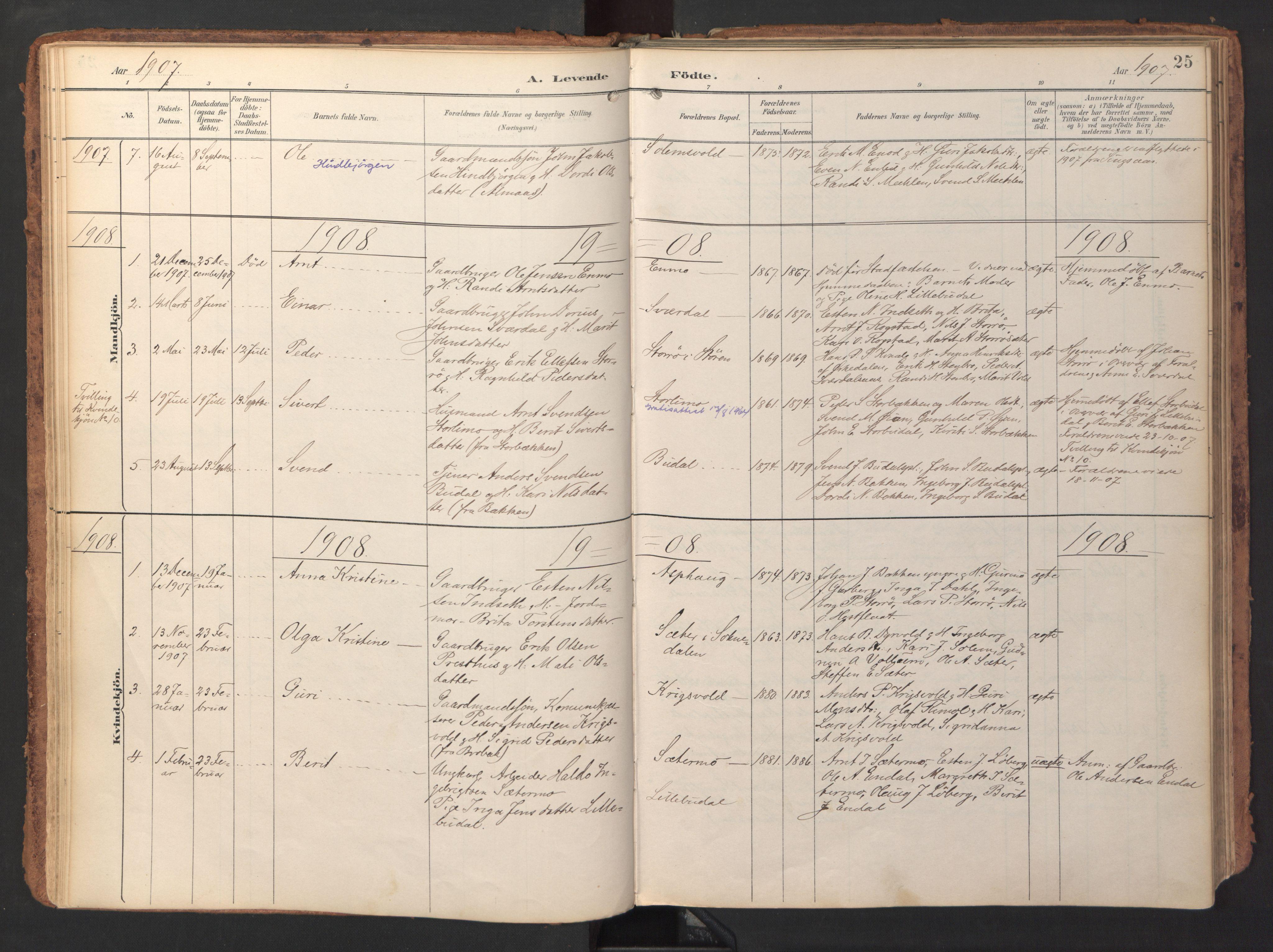 SAT, Ministerialprotokoller, klokkerbøker og fødselsregistre - Sør-Trøndelag, 690/L1050: Ministerialbok nr. 690A01, 1889-1929, s. 25