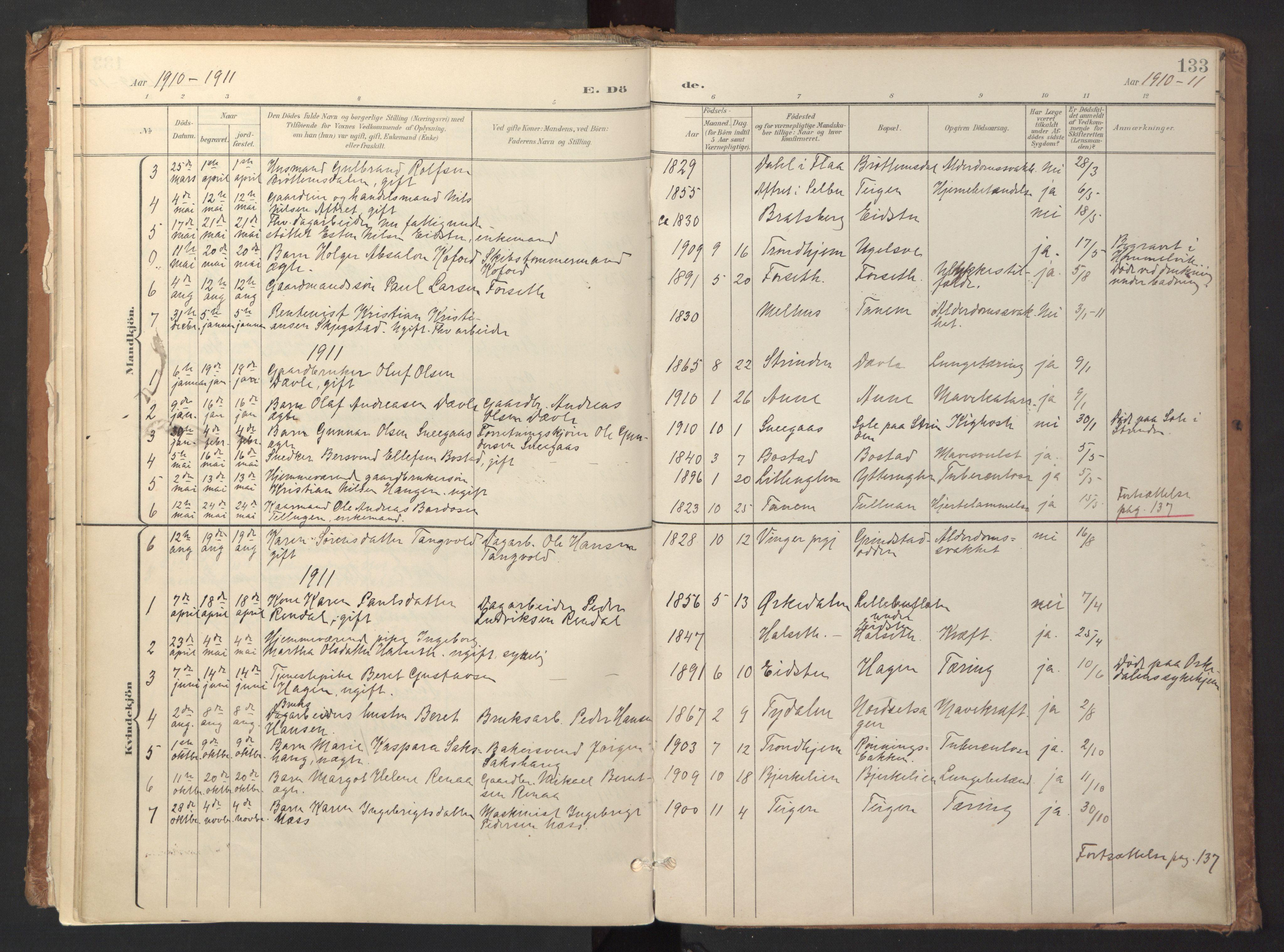 SAT, Ministerialprotokoller, klokkerbøker og fødselsregistre - Sør-Trøndelag, 618/L0448: Ministerialbok nr. 618A11, 1898-1916, s. 133