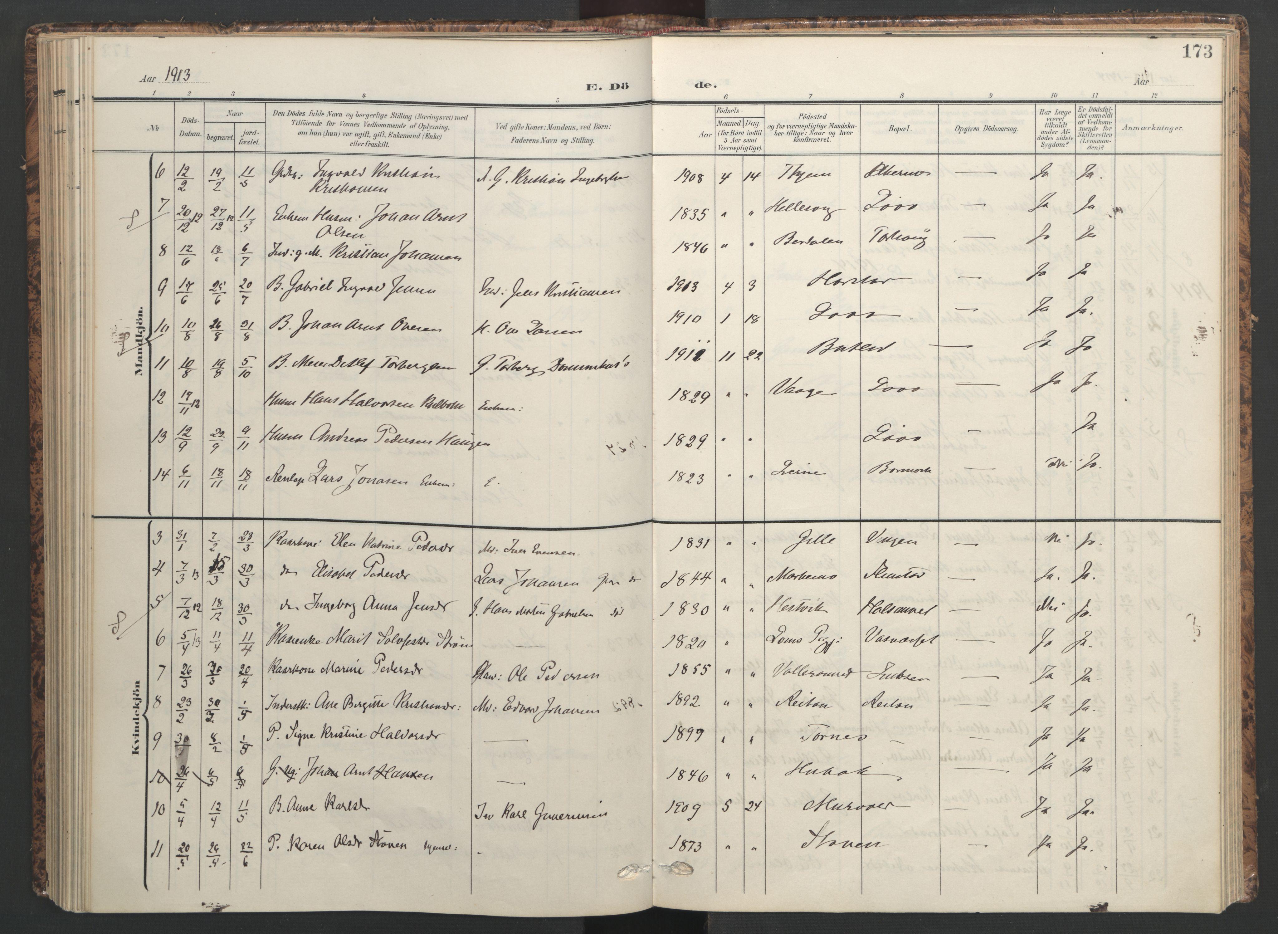 SAT, Ministerialprotokoller, klokkerbøker og fødselsregistre - Sør-Trøndelag, 655/L0682: Ministerialbok nr. 655A11, 1908-1922, s. 173