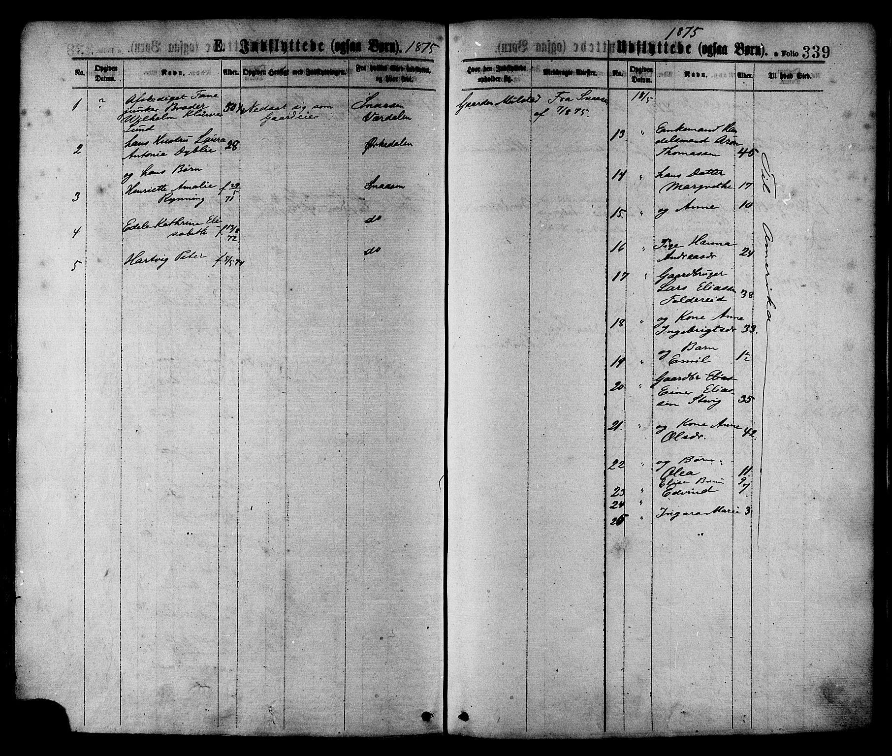 SAT, Ministerialprotokoller, klokkerbøker og fødselsregistre - Nord-Trøndelag, 780/L0642: Ministerialbok nr. 780A07 /1, 1874-1885, s. 339