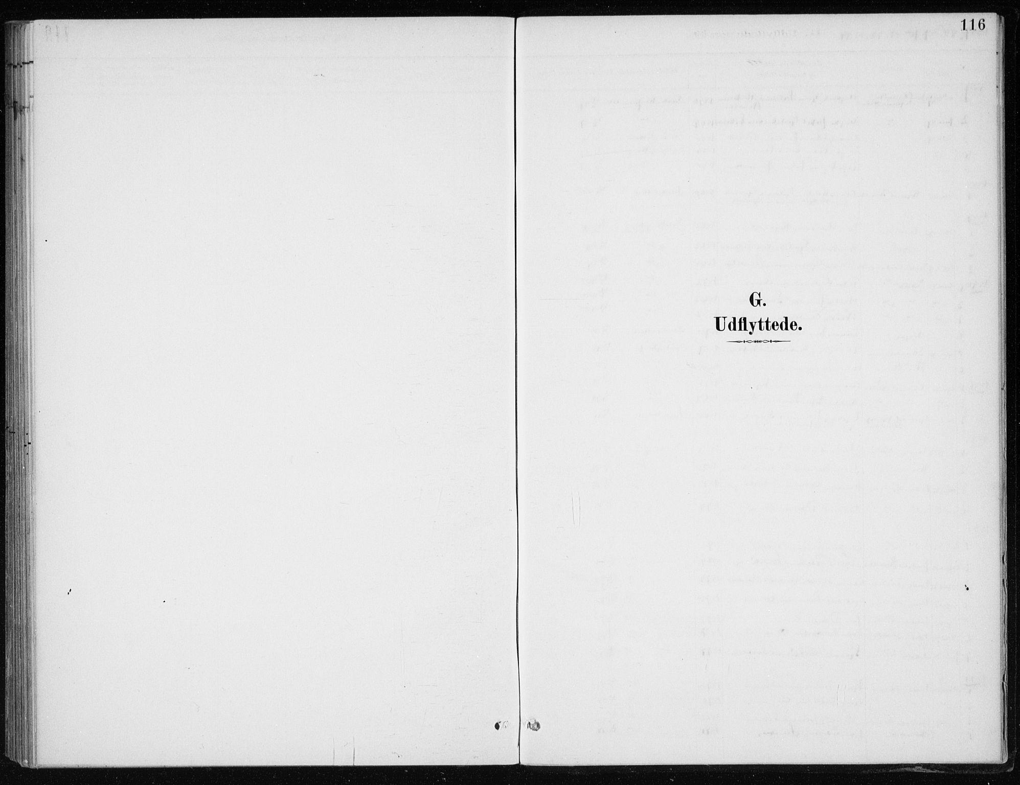SAB, Kvinnherad Sokneprestembete, H/Haa: Ministerialbok nr. F 1, 1887-1912, s. 116
