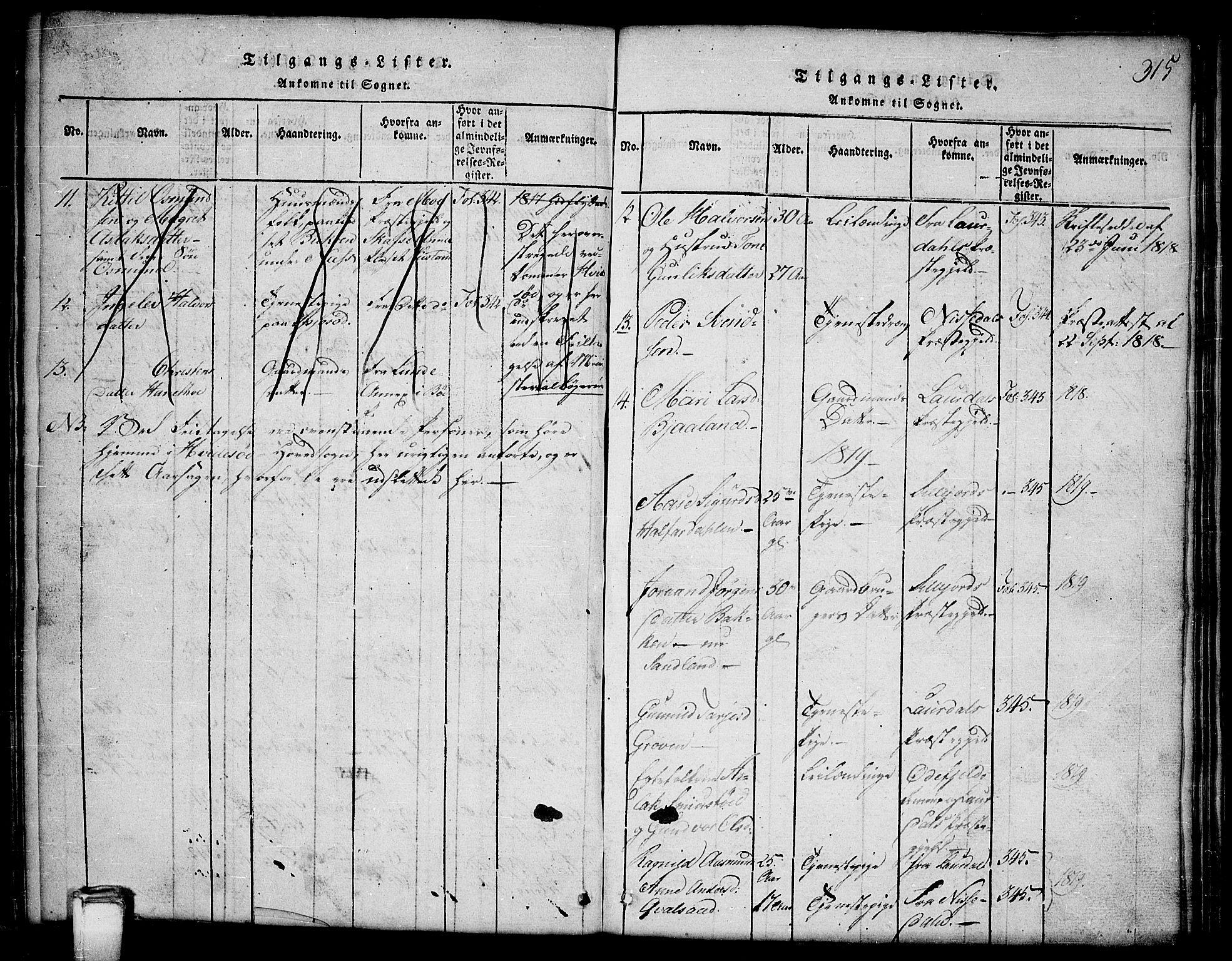 SAKO, Kviteseid kirkebøker, G/Gb/L0001: Klokkerbok nr. II 1, 1815-1842, s. 315
