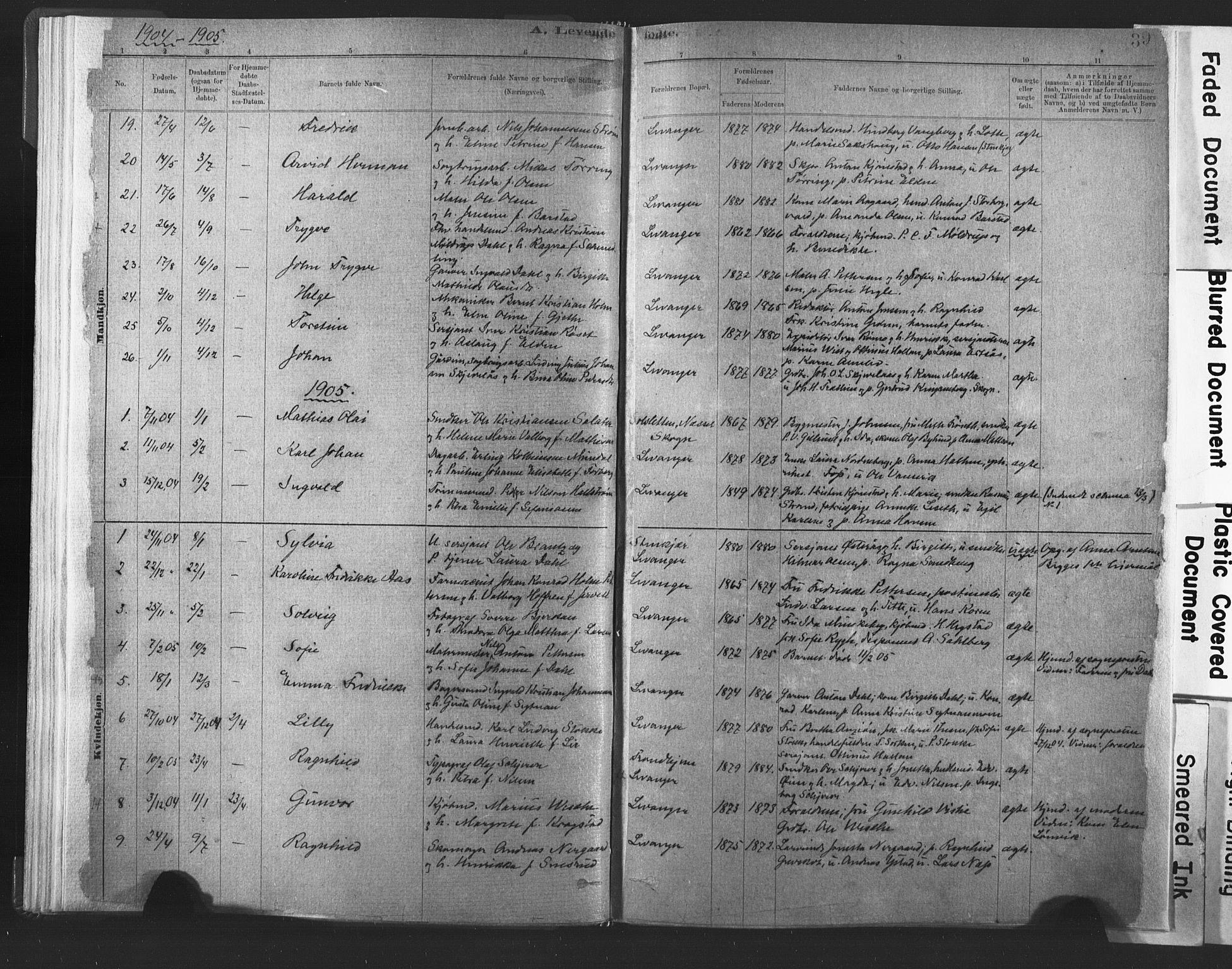 SAT, Ministerialprotokoller, klokkerbøker og fødselsregistre - Nord-Trøndelag, 720/L0189: Ministerialbok nr. 720A05, 1880-1911, s. 39