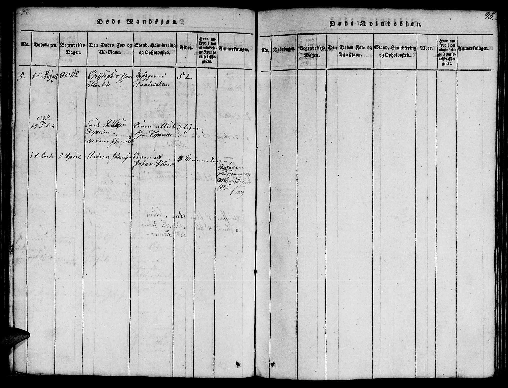 SAT, Ministerialprotokoller, klokkerbøker og fødselsregistre - Nord-Trøndelag, 759/L0527: Klokkerbok nr. 759C01 /1, 1816-1825, s. 95