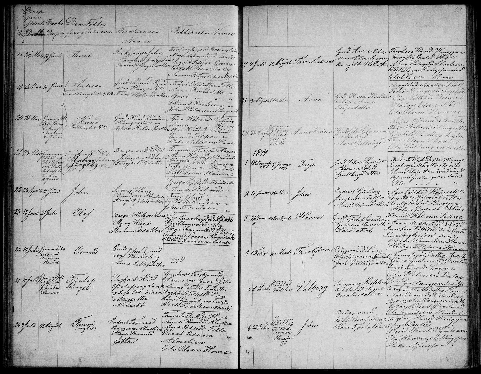 SAKO, Nissedal kirkebøker, G/Gb/L0002: Klokkerbok nr. II 2, 1863-1892, s. 25