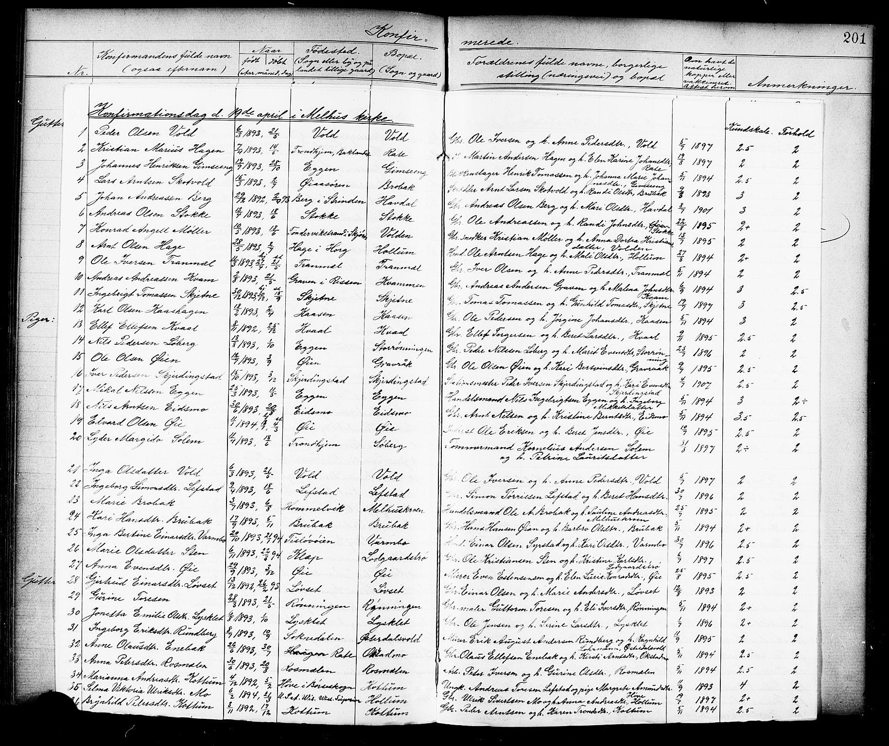 SAT, Ministerialprotokoller, klokkerbøker og fødselsregistre - Sør-Trøndelag, 691/L1094: Klokkerbok nr. 691C05, 1879-1911, s. 201g