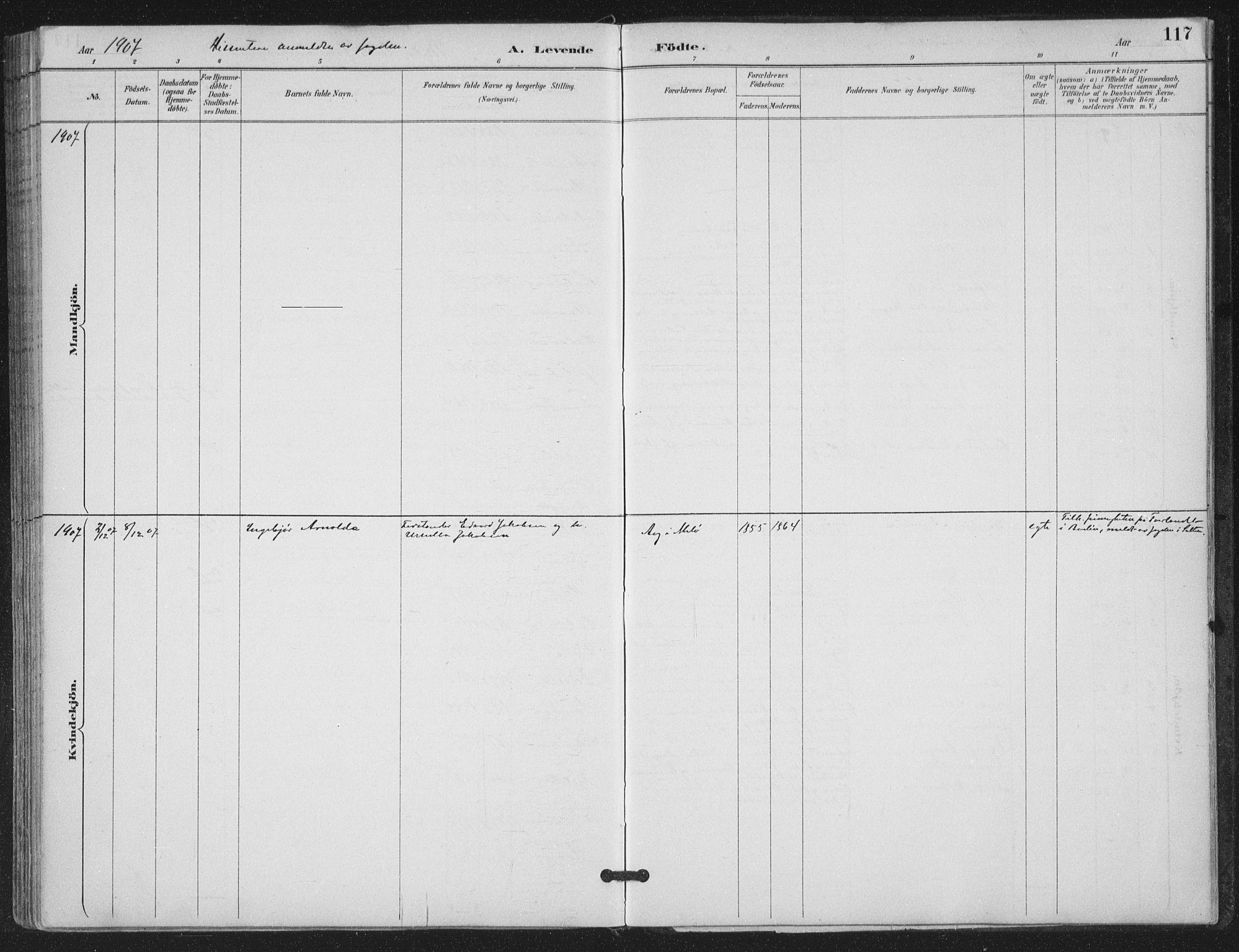 SAT, Ministerialprotokoller, klokkerbøker og fødselsregistre - Nordland, 843/L0628: Ministerialbok nr. 843A03, 1889-1907, s. 117