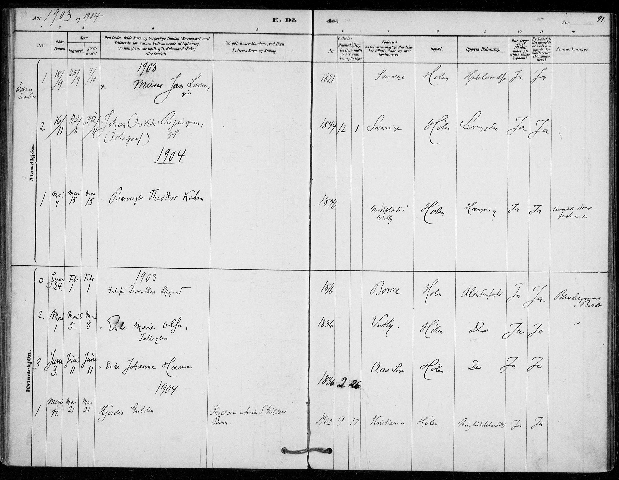 SAO, Vestby prestekontor Kirkebøker, F/Fe/L0001: Ministerialbok nr. V 1, 1878-1931, s. 91