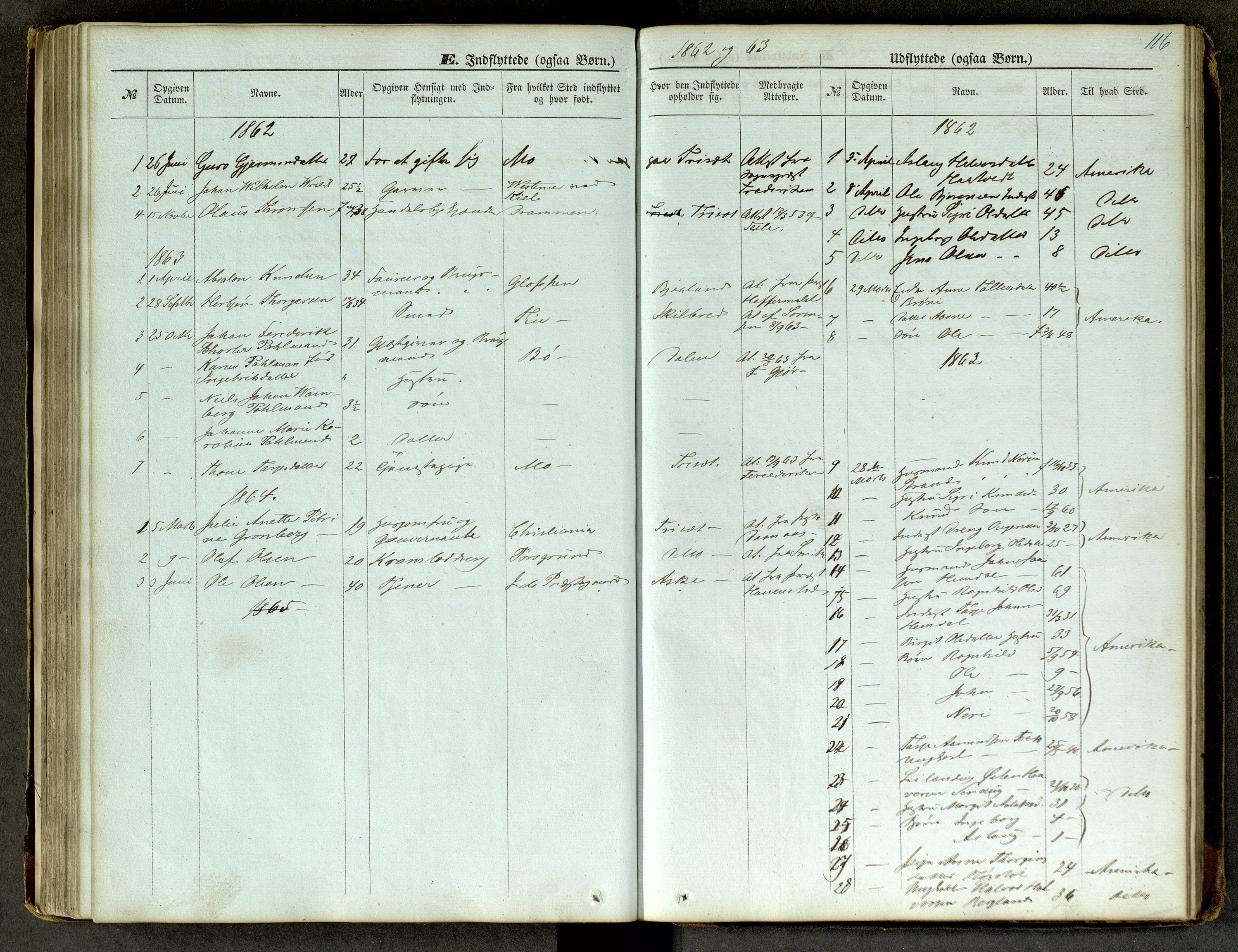 SAKO, Lårdal kirkebøker, G/Ga/L0002: Klokkerbok nr. I 2, 1861-1890, s. 116