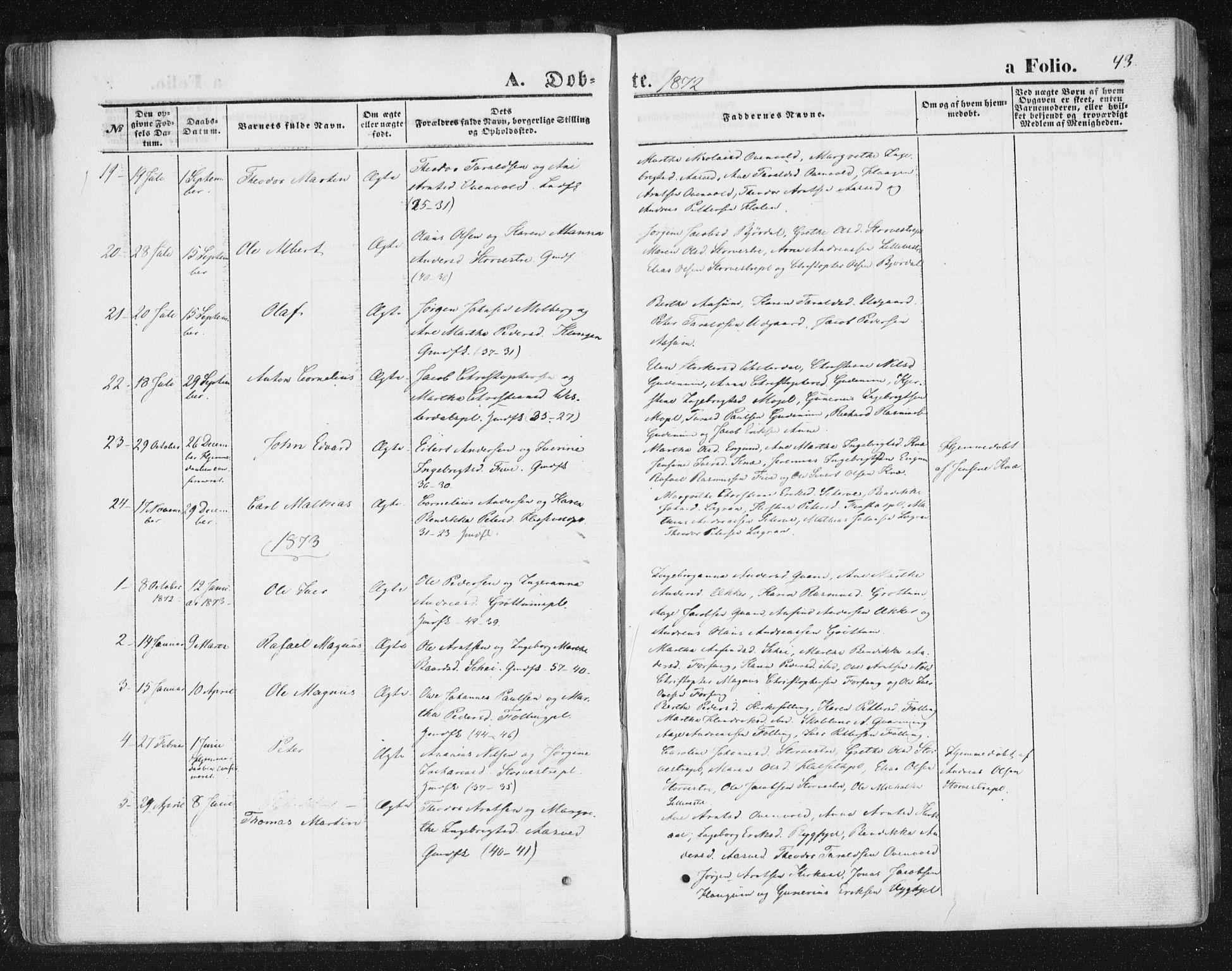 SAT, Ministerialprotokoller, klokkerbøker og fødselsregistre - Nord-Trøndelag, 746/L0447: Ministerialbok nr. 746A06, 1860-1877, s. 43