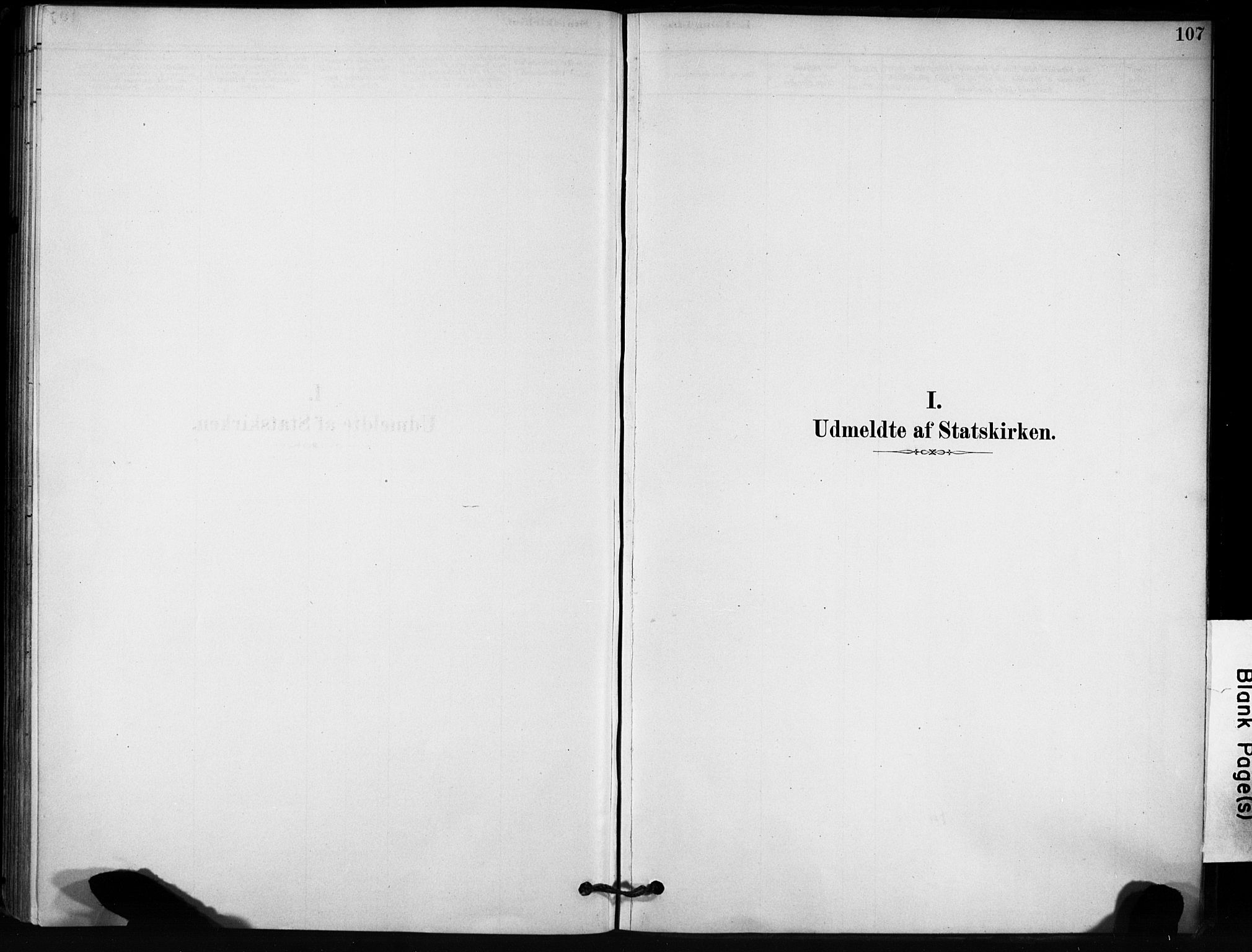 SAT, Ministerialprotokoller, klokkerbøker og fødselsregistre - Sør-Trøndelag, 666/L0786: Ministerialbok nr. 666A04, 1878-1895, s. 107