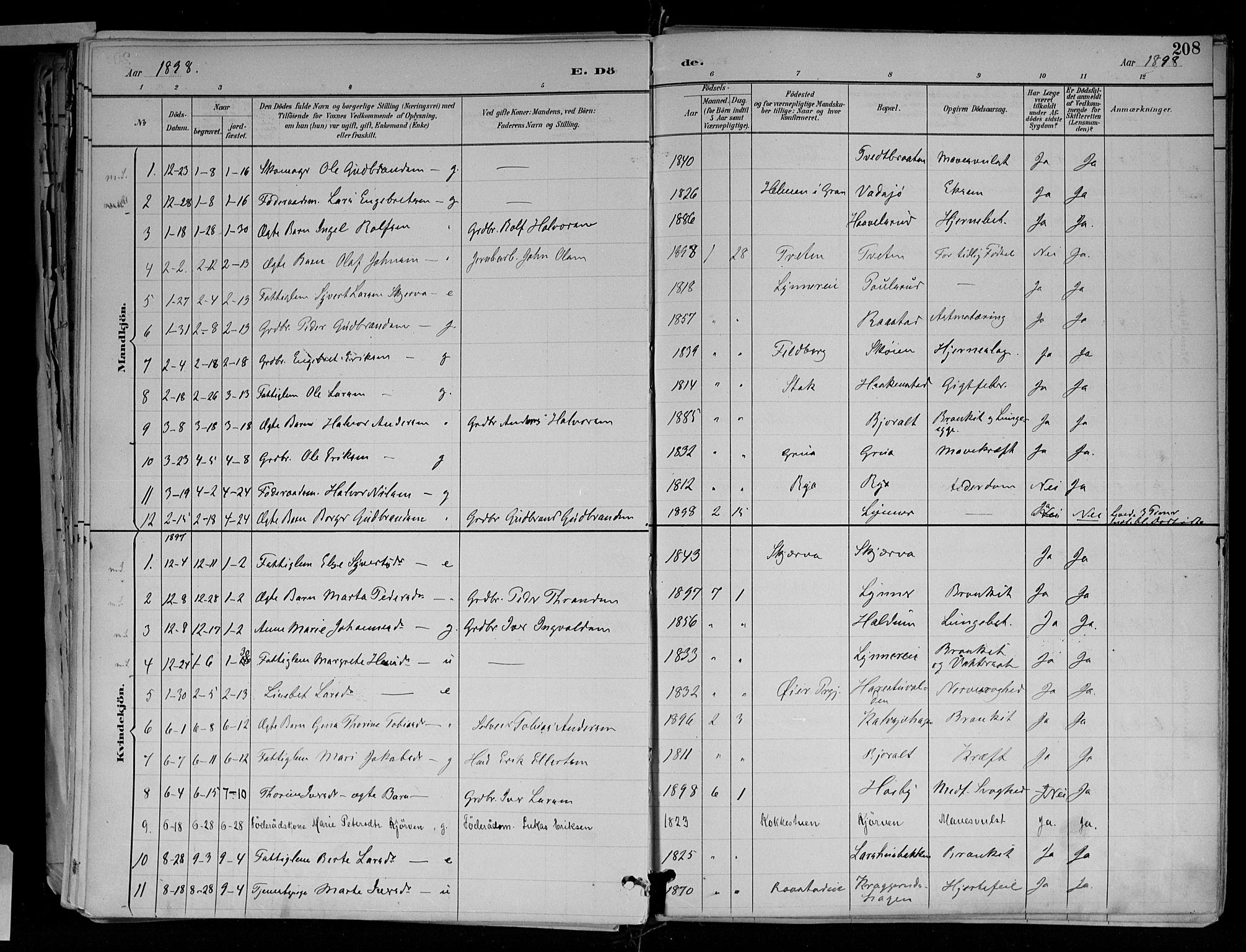 SAH, Jevnaker prestekontor, Ministerialbok nr. 10, 1891-1906, s. 208