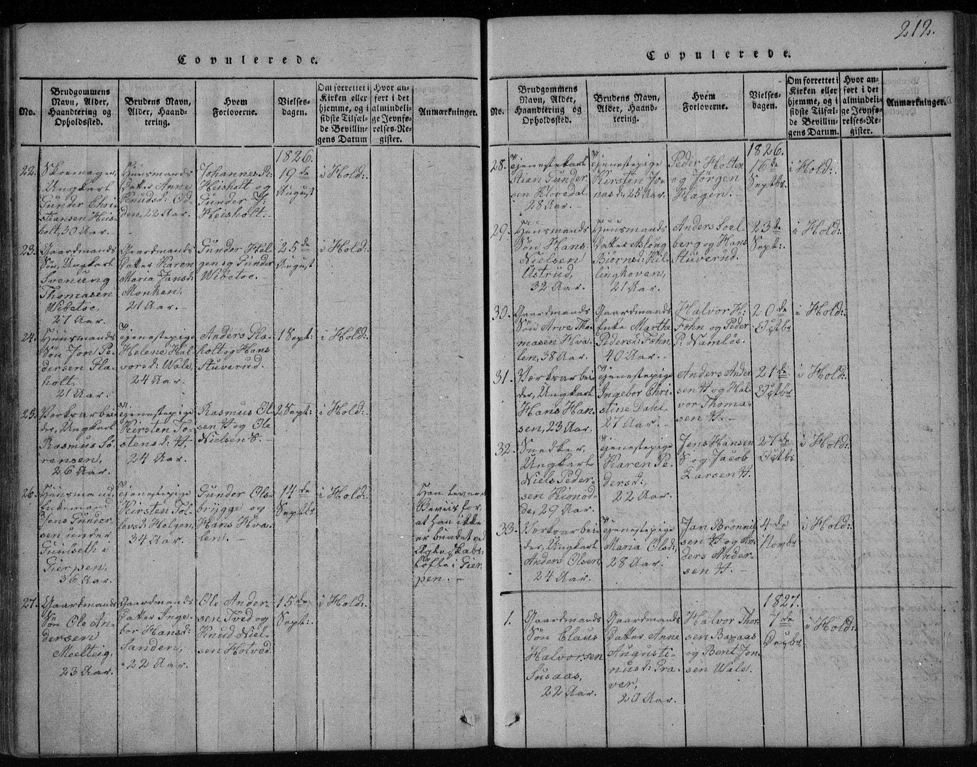 SAKO, Holla kirkebøker, F/Fa/L0003: Ministerialbok nr. 3, 1815-1830, s. 212