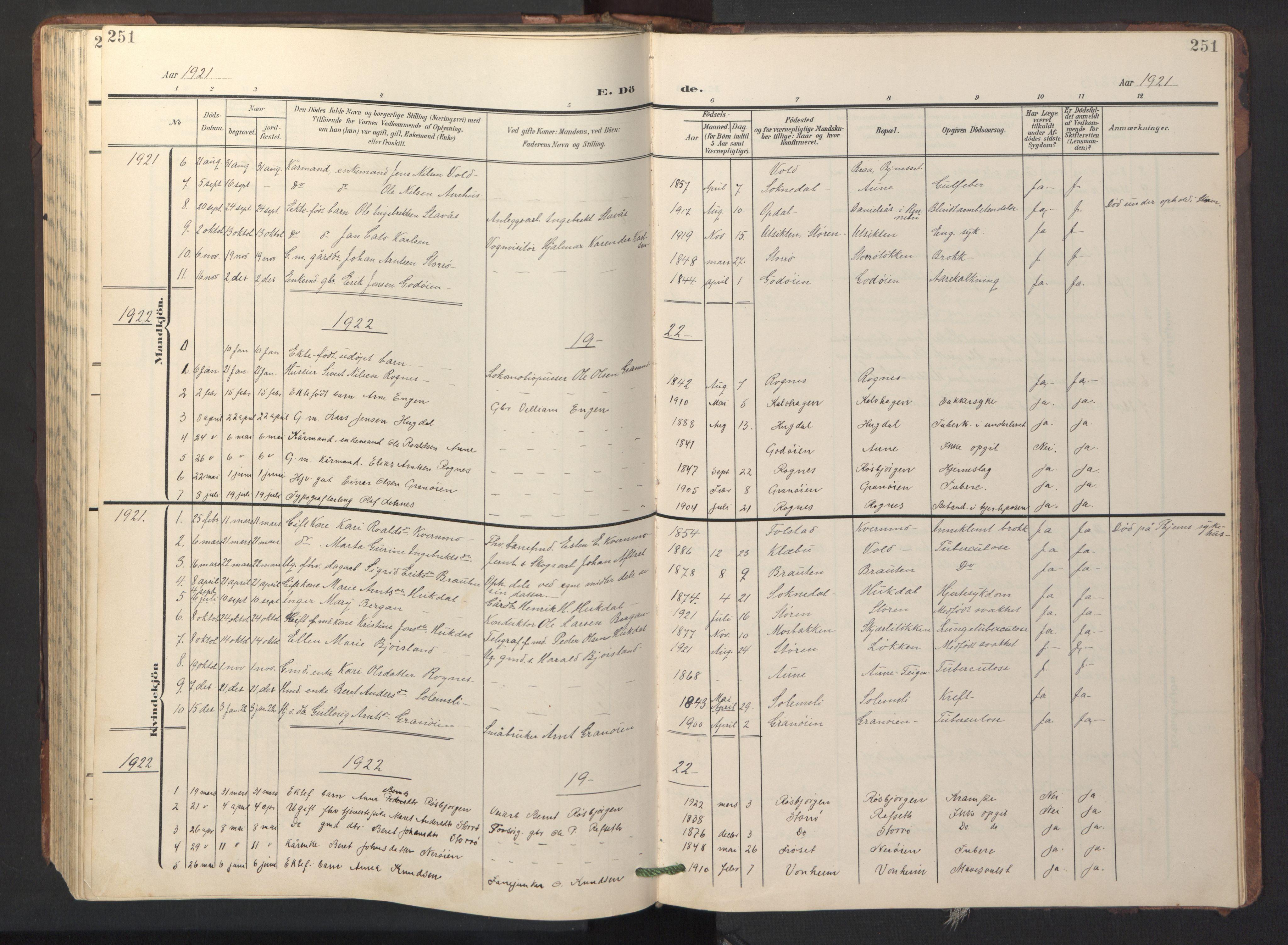 SAT, Ministerialprotokoller, klokkerbøker og fødselsregistre - Sør-Trøndelag, 687/L1019: Klokkerbok nr. 687C03, 1904-1931, s. 251