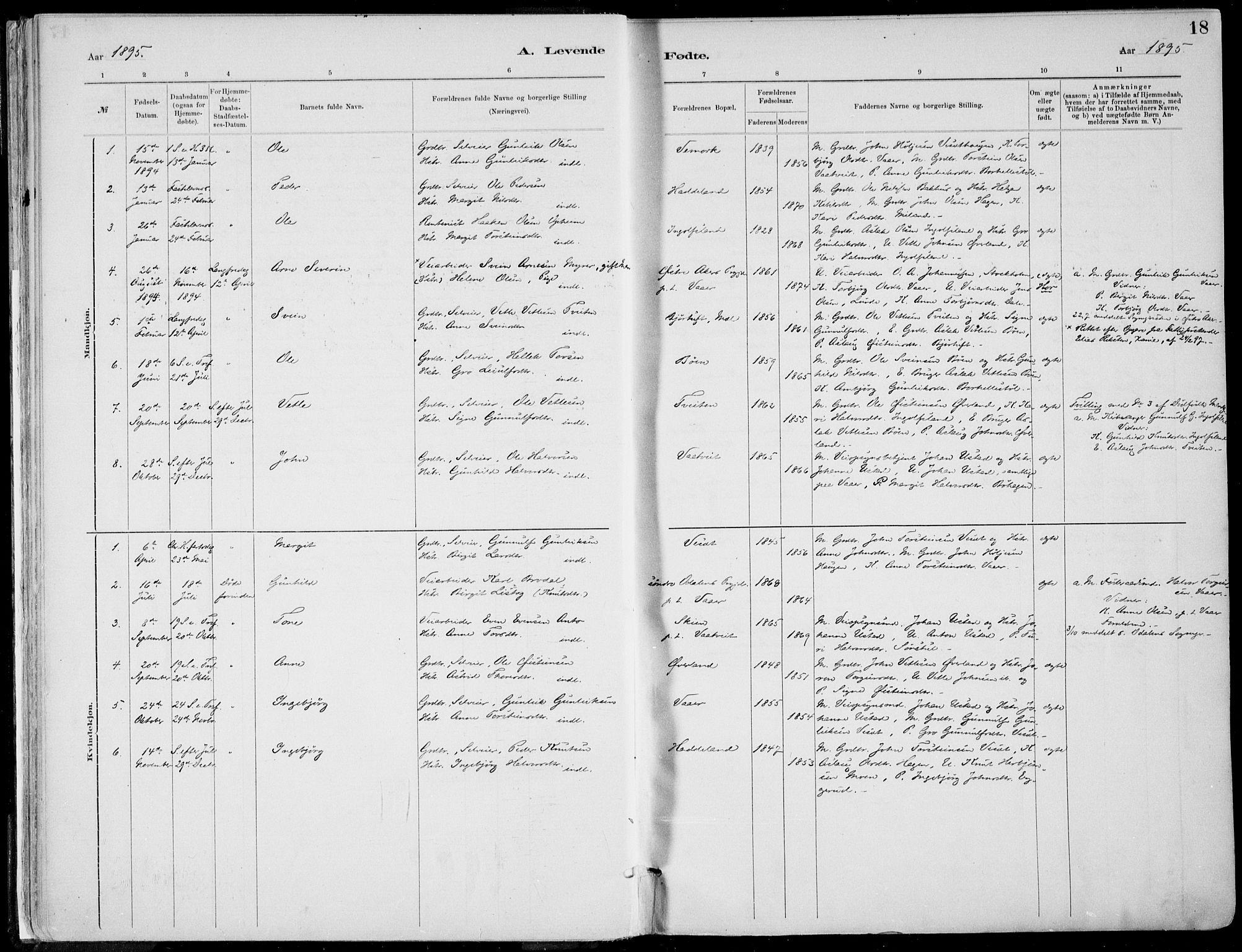 SAKO, Rjukan kirkebøker, F/Fa/L0001: Ministerialbok nr. 1, 1878-1912, s. 18