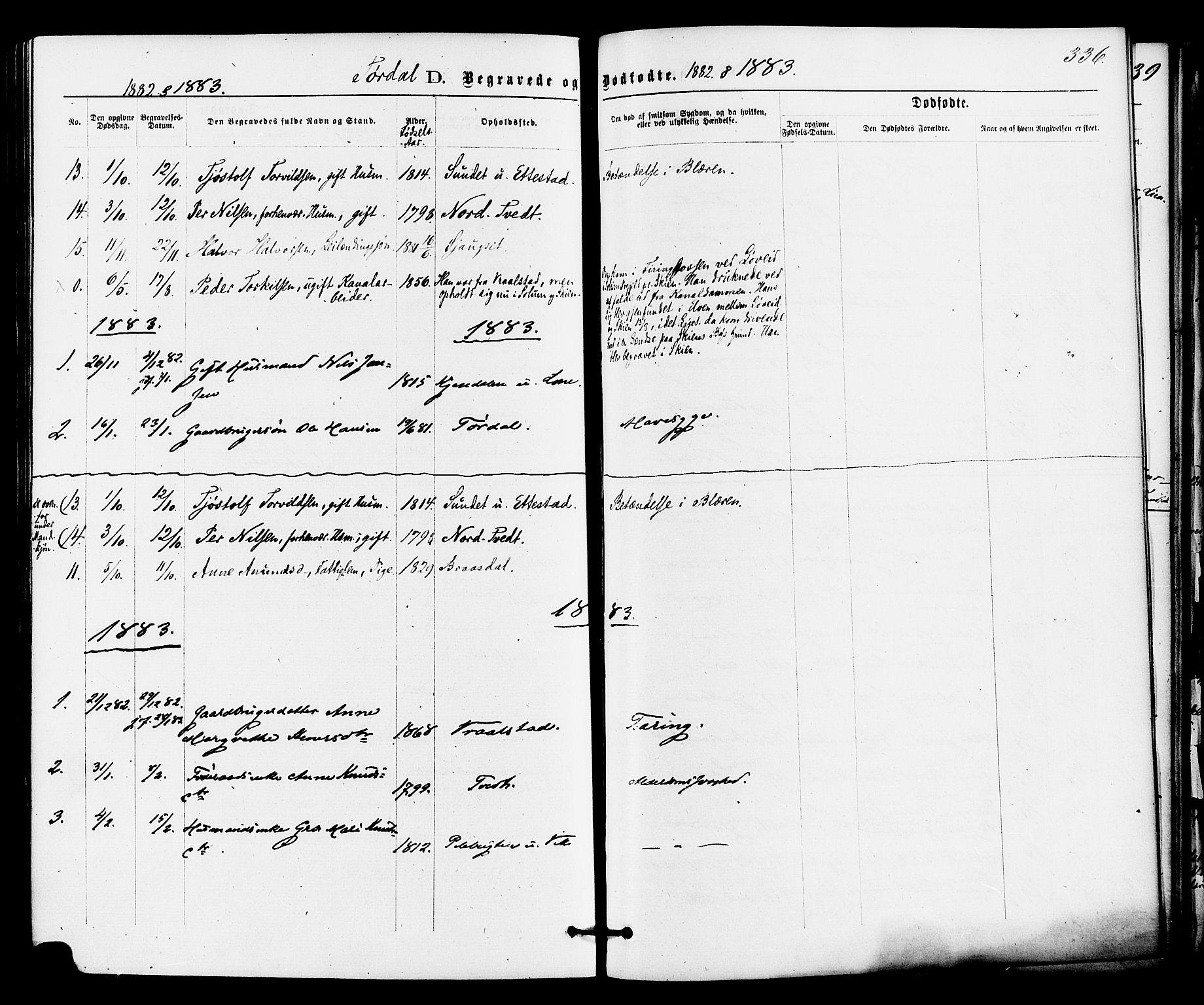 SAKO, Drangedal kirkebøker, F/Fa/L0009: Ministerialbok nr. 9 /2, 1872-1884, s. 336