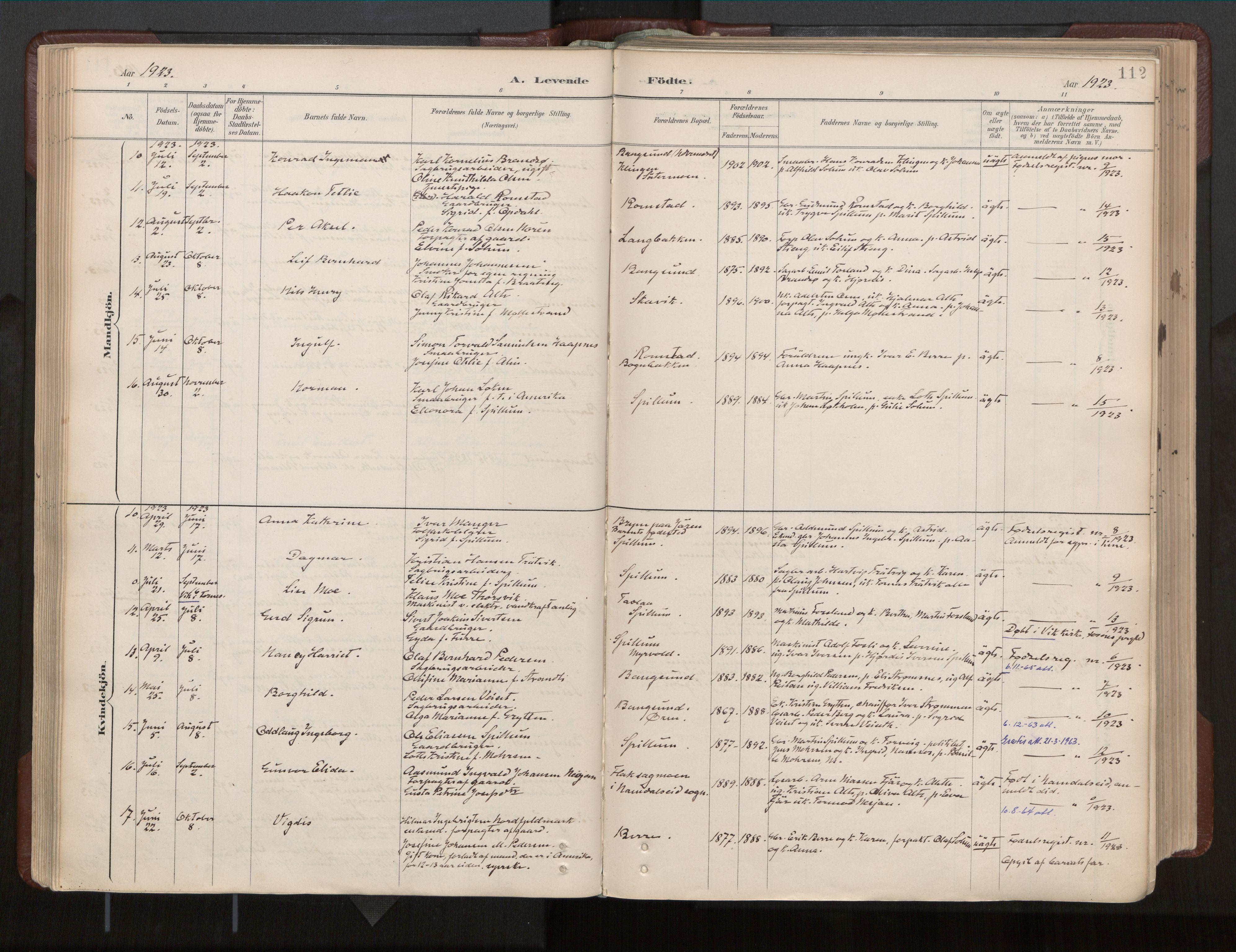 SAT, Ministerialprotokoller, klokkerbøker og fødselsregistre - Nord-Trøndelag, 770/L0589: Ministerialbok nr. 770A03, 1887-1929, s. 112