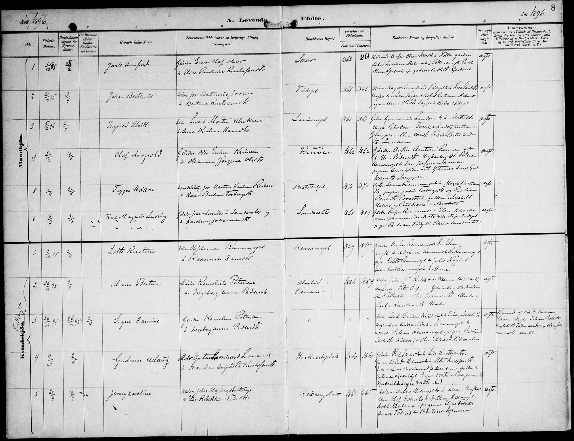 SAT, Ministerialprotokoller, klokkerbøker og fødselsregistre - Nord-Trøndelag, 745/L0430: Ministerialbok nr. 745A02, 1895-1913, s. 8