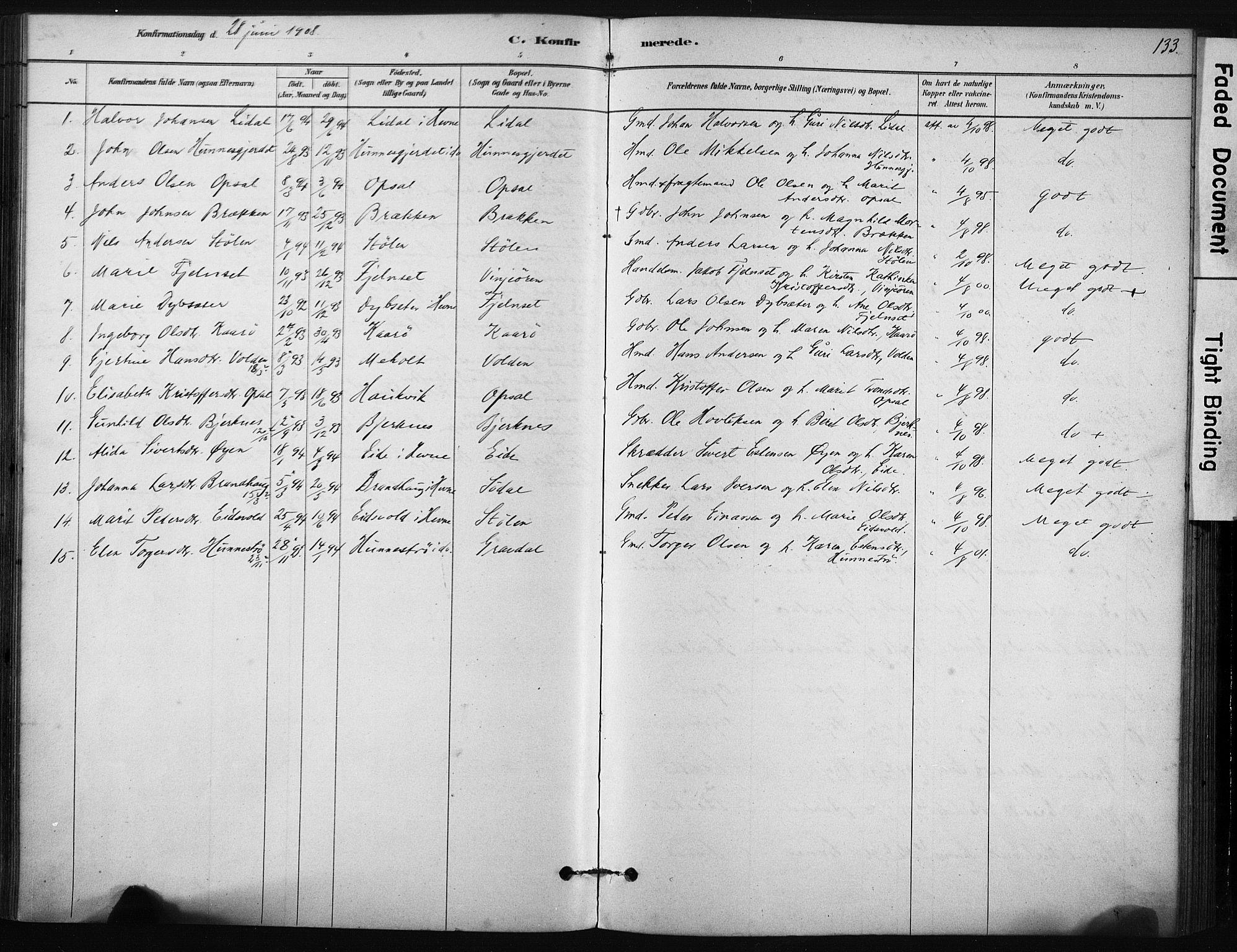 SAT, Ministerialprotokoller, klokkerbøker og fødselsregistre - Sør-Trøndelag, 631/L0512: Ministerialbok nr. 631A01, 1879-1912, s. 133