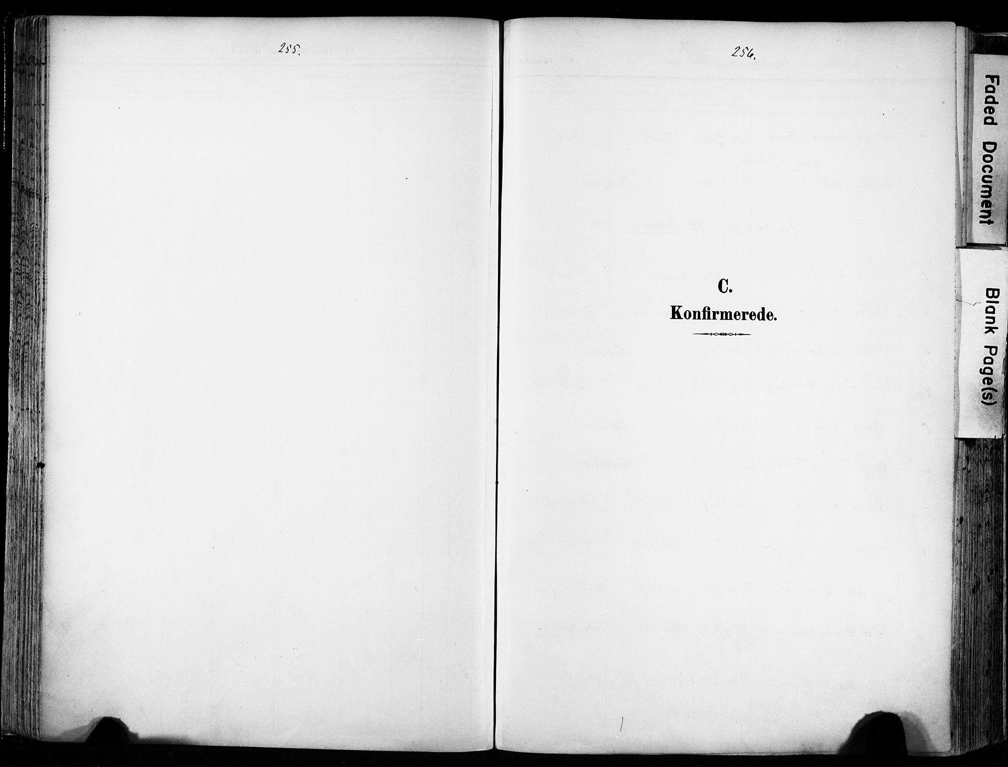 SAT, Ministerialprotokoller, klokkerbøker og fødselsregistre - Sør-Trøndelag, 606/L0301: Ministerialbok nr. 606A16, 1894-1907, s. 255-256