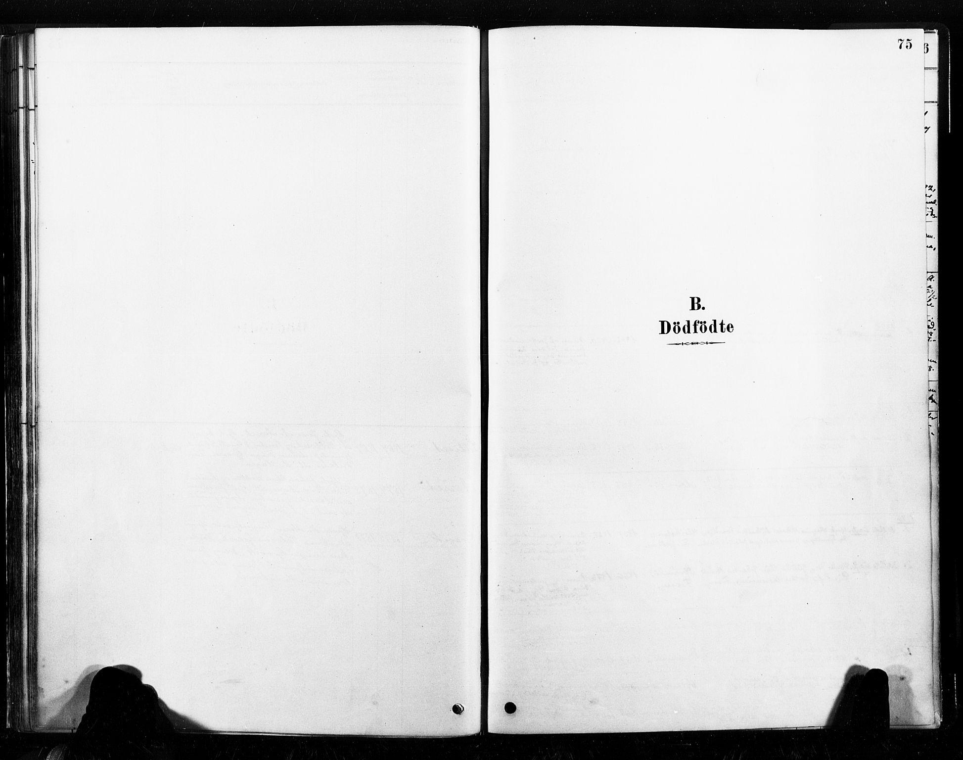 SAT, Ministerialprotokoller, klokkerbøker og fødselsregistre - Nord-Trøndelag, 789/L0705: Ministerialbok nr. 789A01, 1878-1910, s. 75