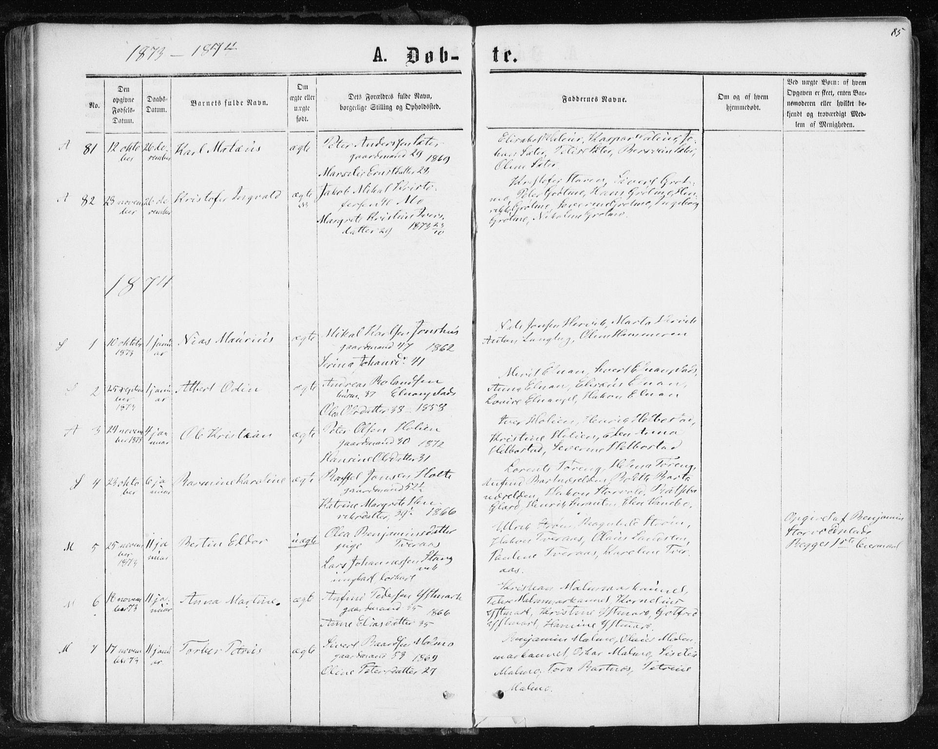 SAT, Ministerialprotokoller, klokkerbøker og fødselsregistre - Nord-Trøndelag, 741/L0394: Ministerialbok nr. 741A08, 1864-1877, s. 85
