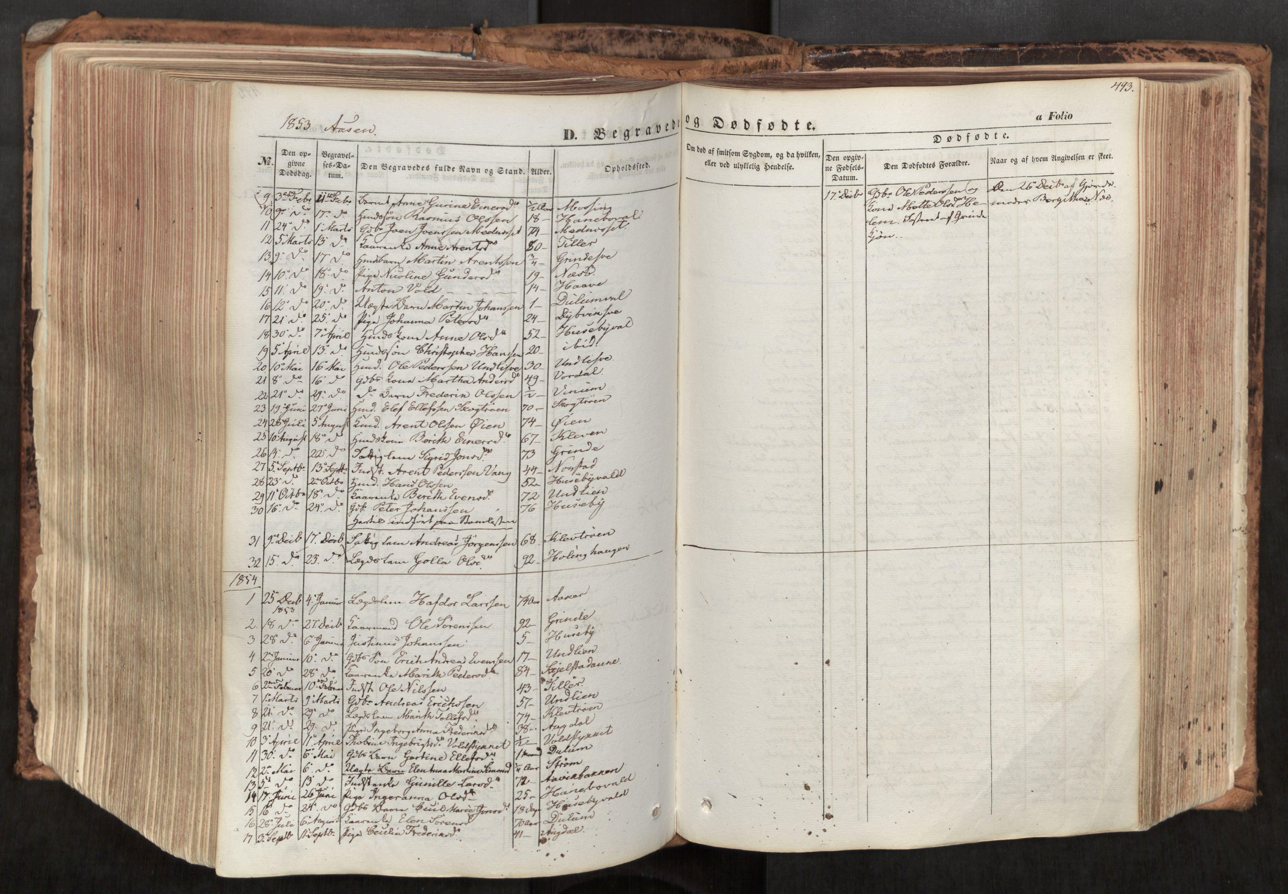 SAT, Ministerialprotokoller, klokkerbøker og fødselsregistre - Nord-Trøndelag, 713/L0116: Ministerialbok nr. 713A07, 1850-1877, s. 493