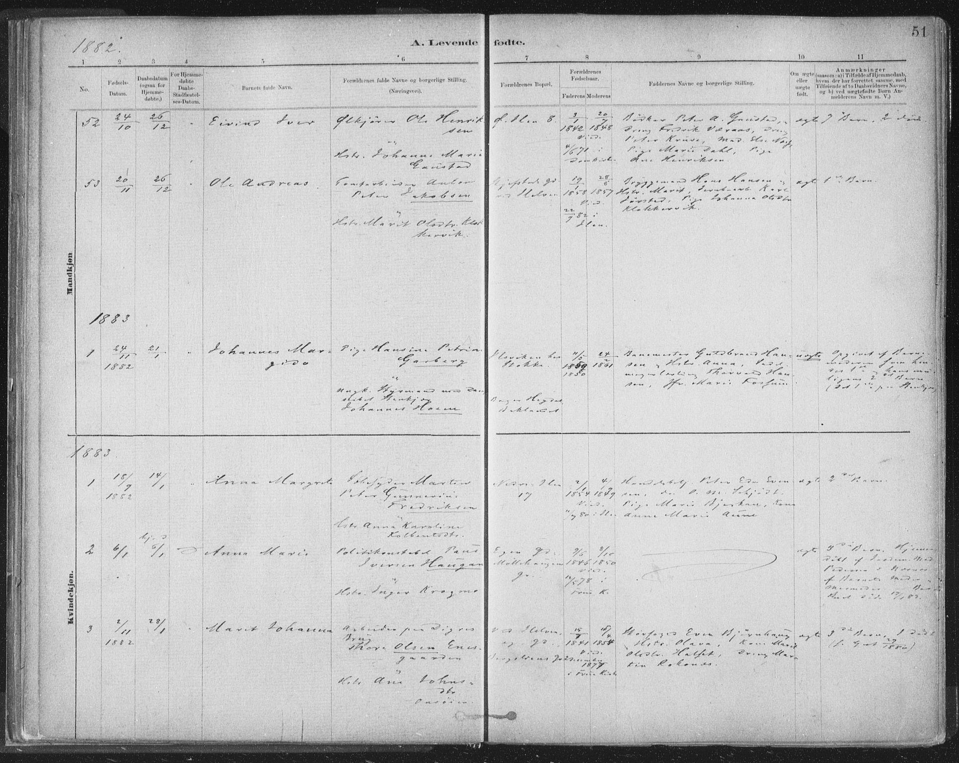 SAT, Ministerialprotokoller, klokkerbøker og fødselsregistre - Sør-Trøndelag, 603/L0162: Ministerialbok nr. 603A01, 1879-1895, s. 51