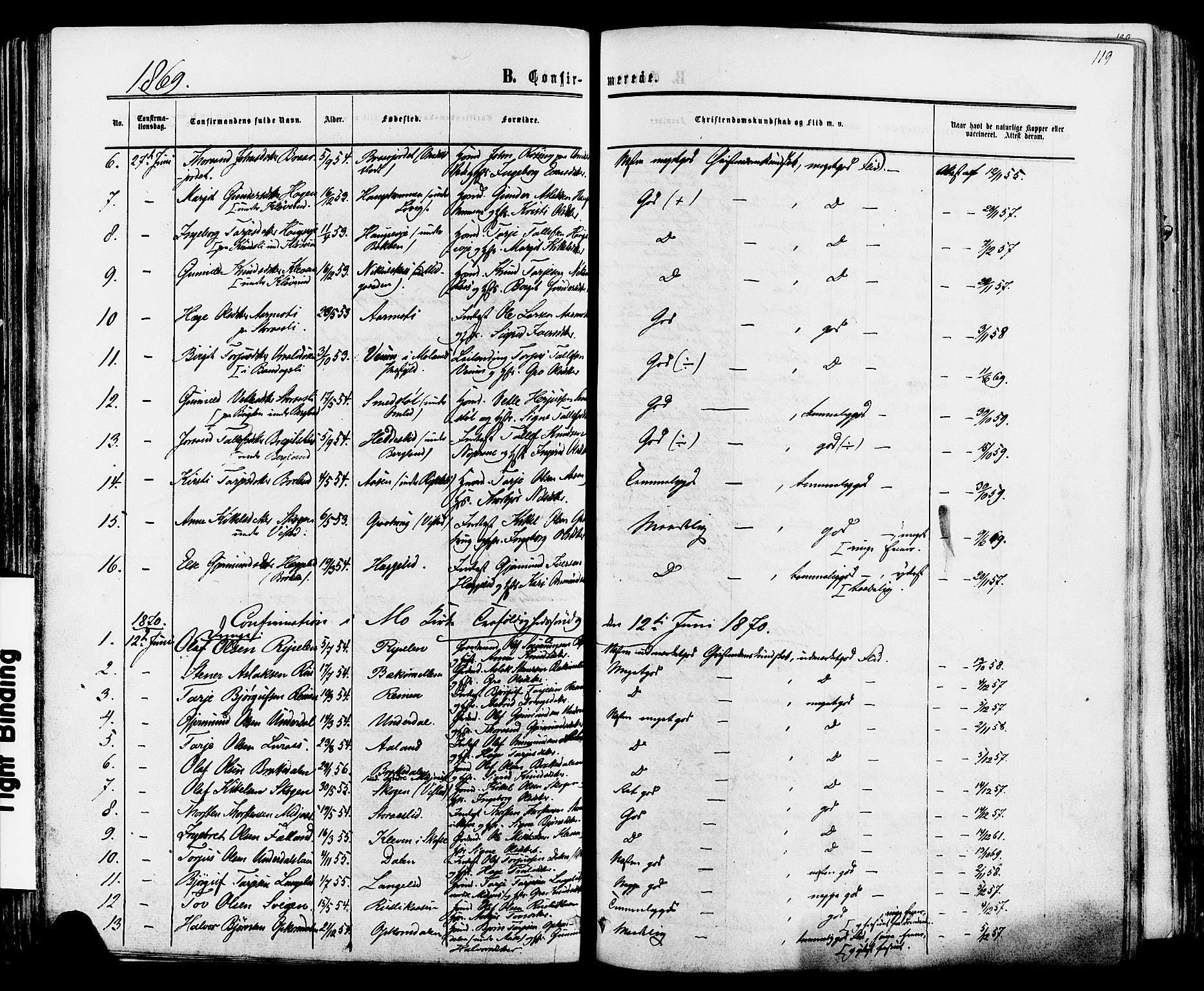 SAKO, Mo kirkebøker, F/Fa/L0006: Ministerialbok nr. I 6, 1865-1885, s. 119