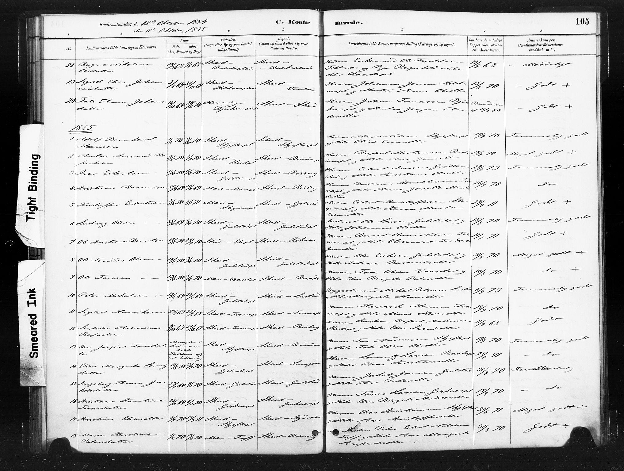 SAT, Ministerialprotokoller, klokkerbøker og fødselsregistre - Nord-Trøndelag, 736/L0361: Ministerialbok nr. 736A01, 1884-1906, s. 105