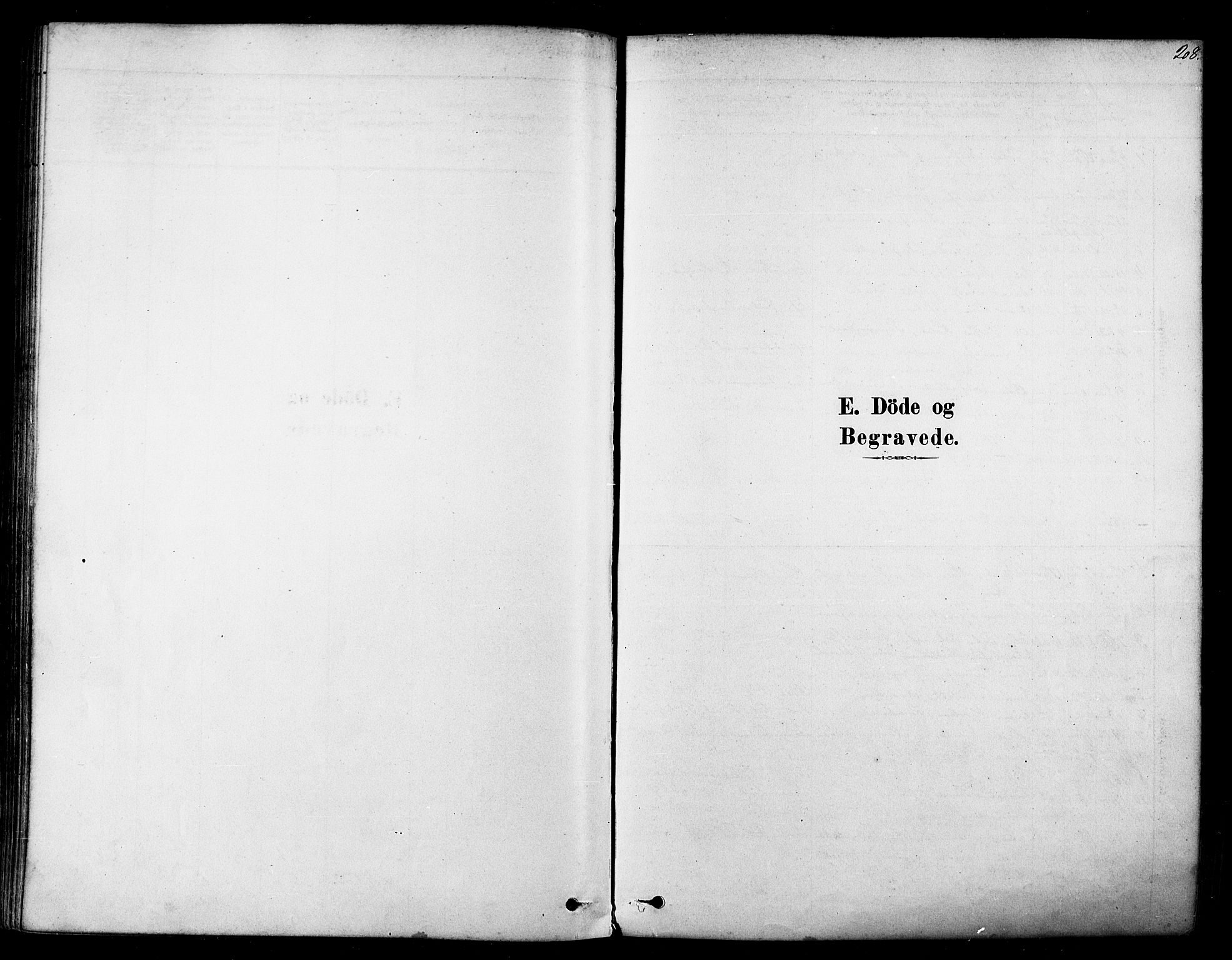 SATØ, Tana sokneprestkontor, H/Ha/L0004kirke: Ministerialbok nr. 4, 1878-1891, s. 208