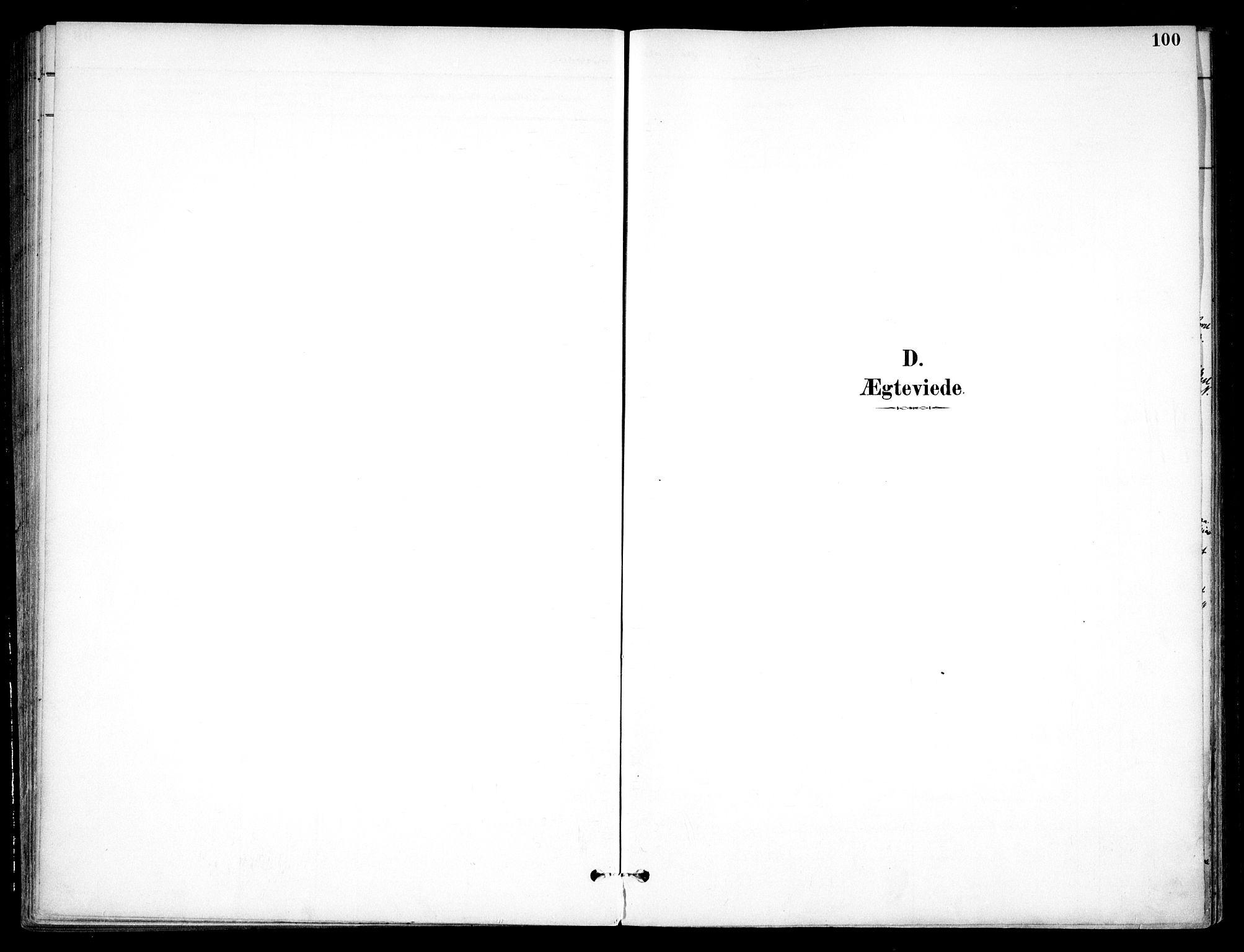 SAO, Nannestad prestekontor Kirkebøker, F/Fc/L0002: Ministerialbok nr. III 2, 1893-1907, s. 100