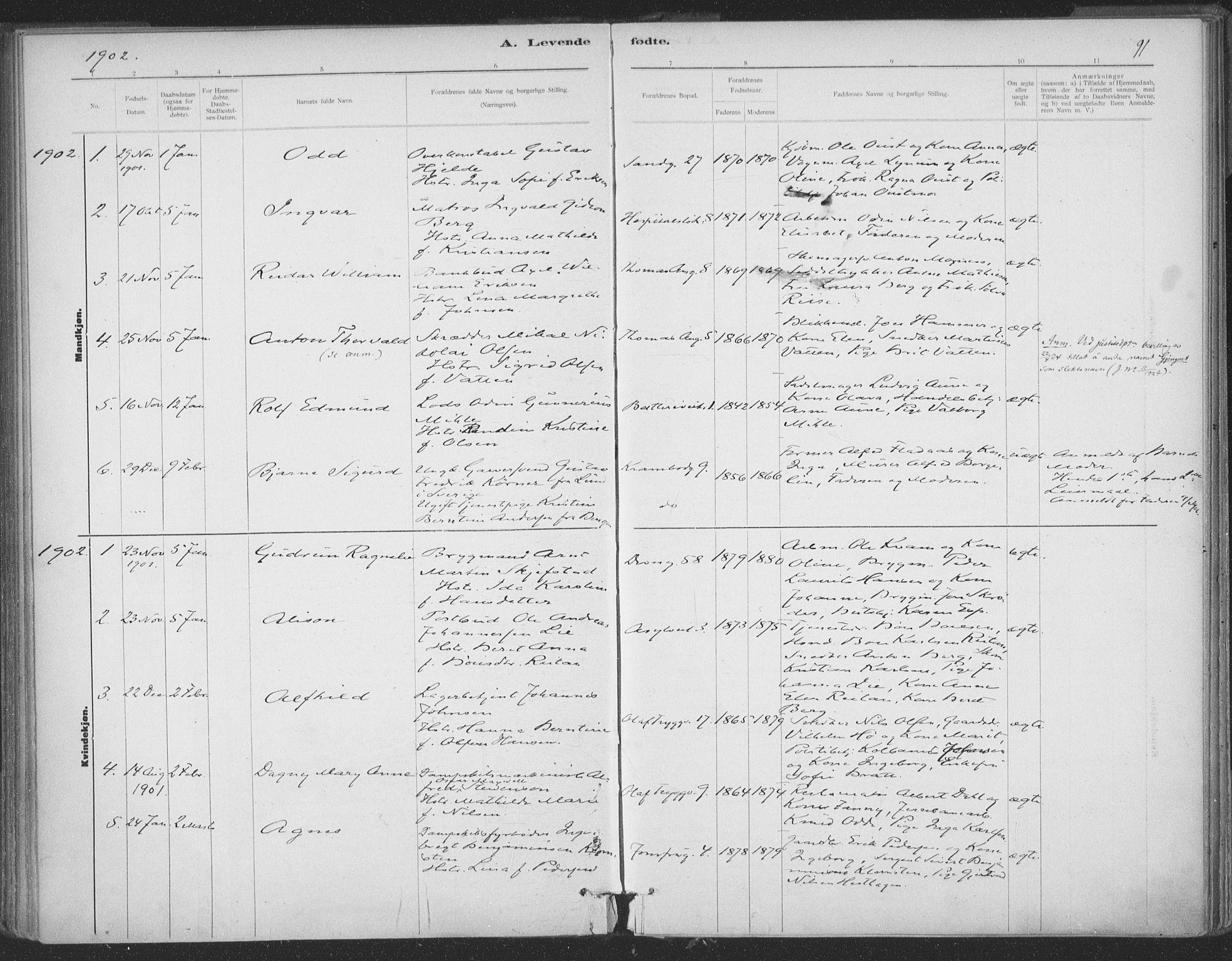 SAT, Ministerialprotokoller, klokkerbøker og fødselsregistre - Sør-Trøndelag, 602/L0122: Ministerialbok nr. 602A20, 1892-1908, s. 91